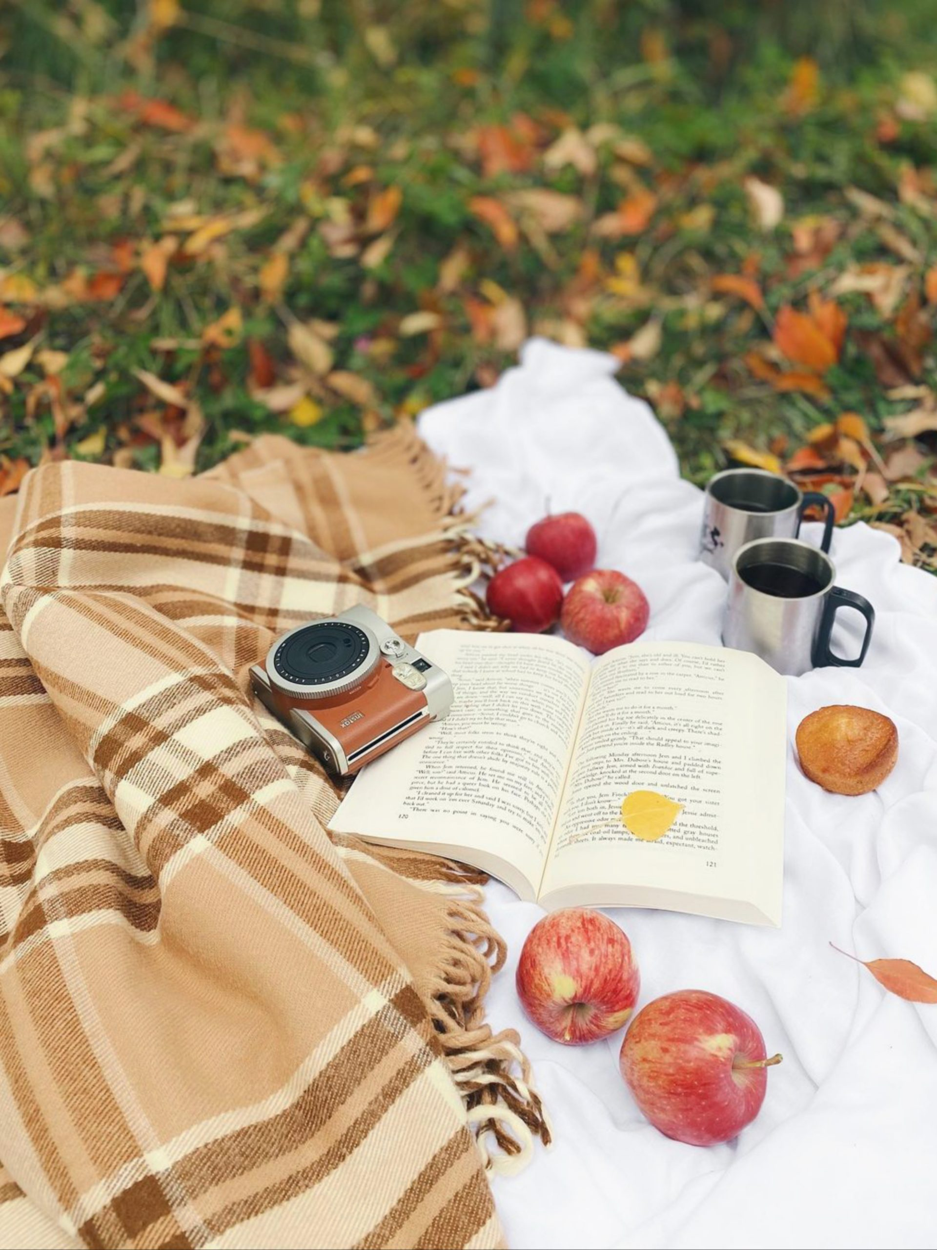 Apple, book and mugs