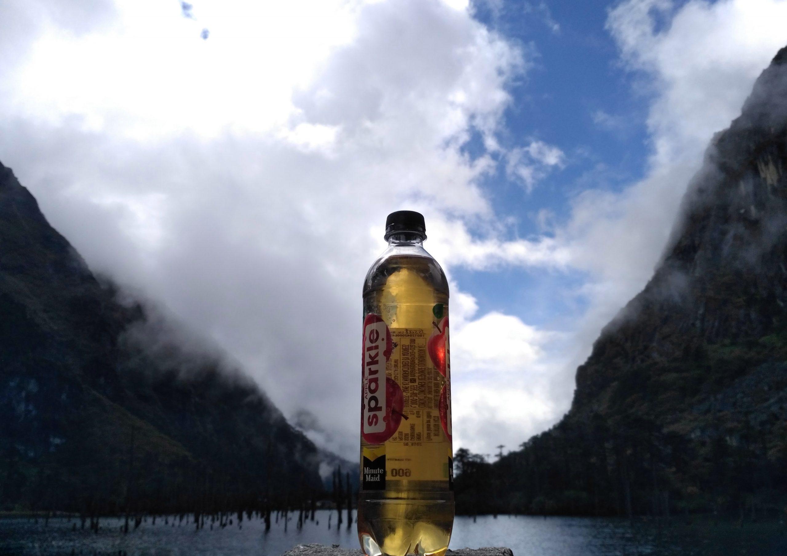 A soft drink bottle
