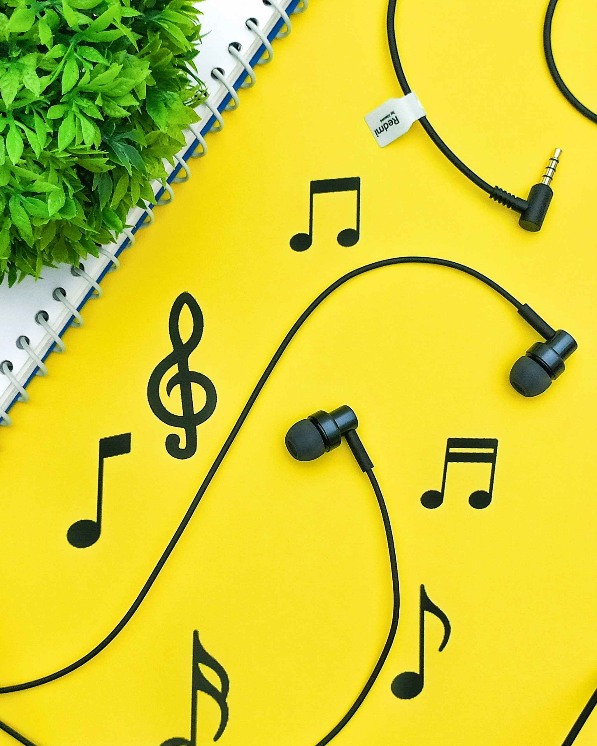 earphones and music notes