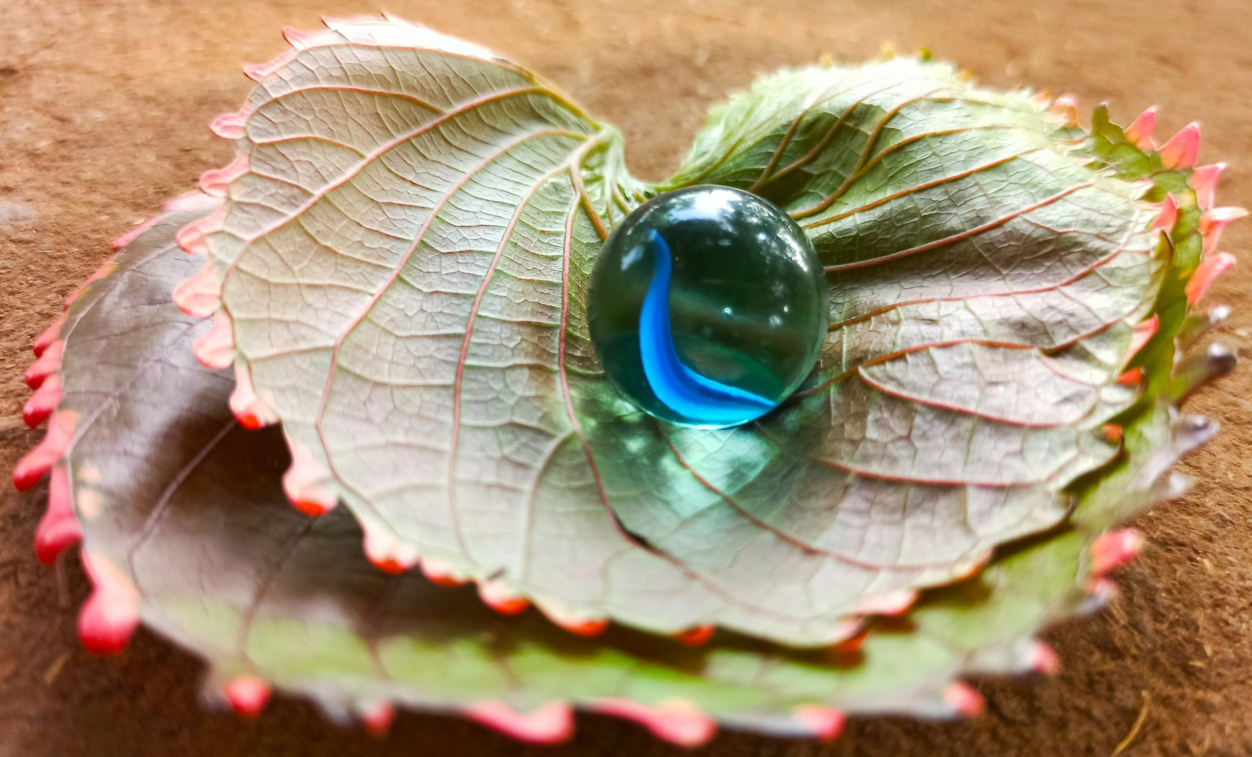 A crystal ball on leaves