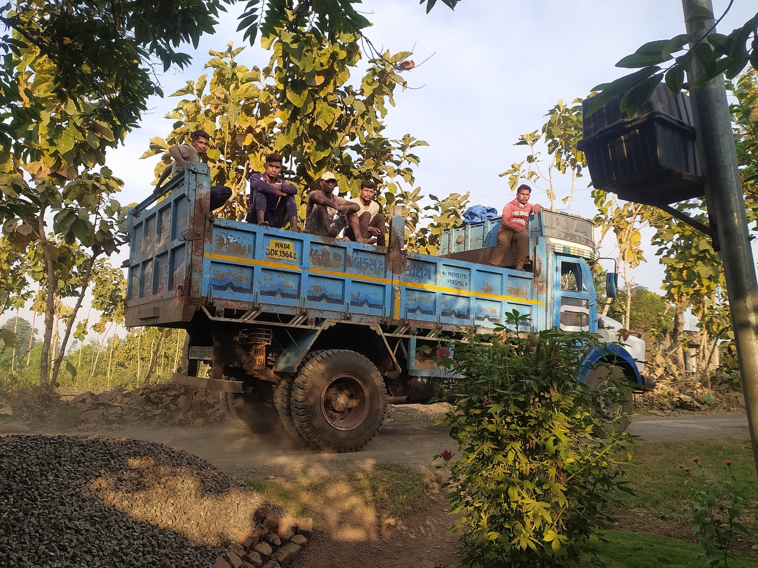 Boys traveling in a truck