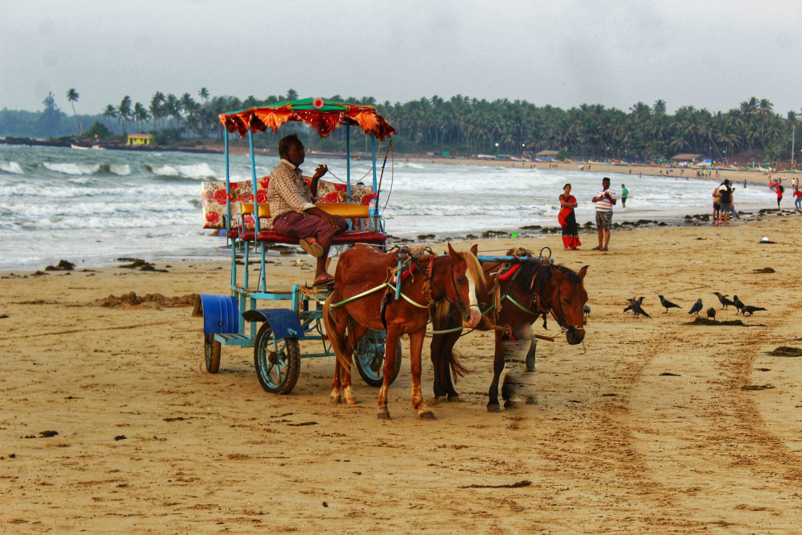 A horse ride cart at Chiwala beach
