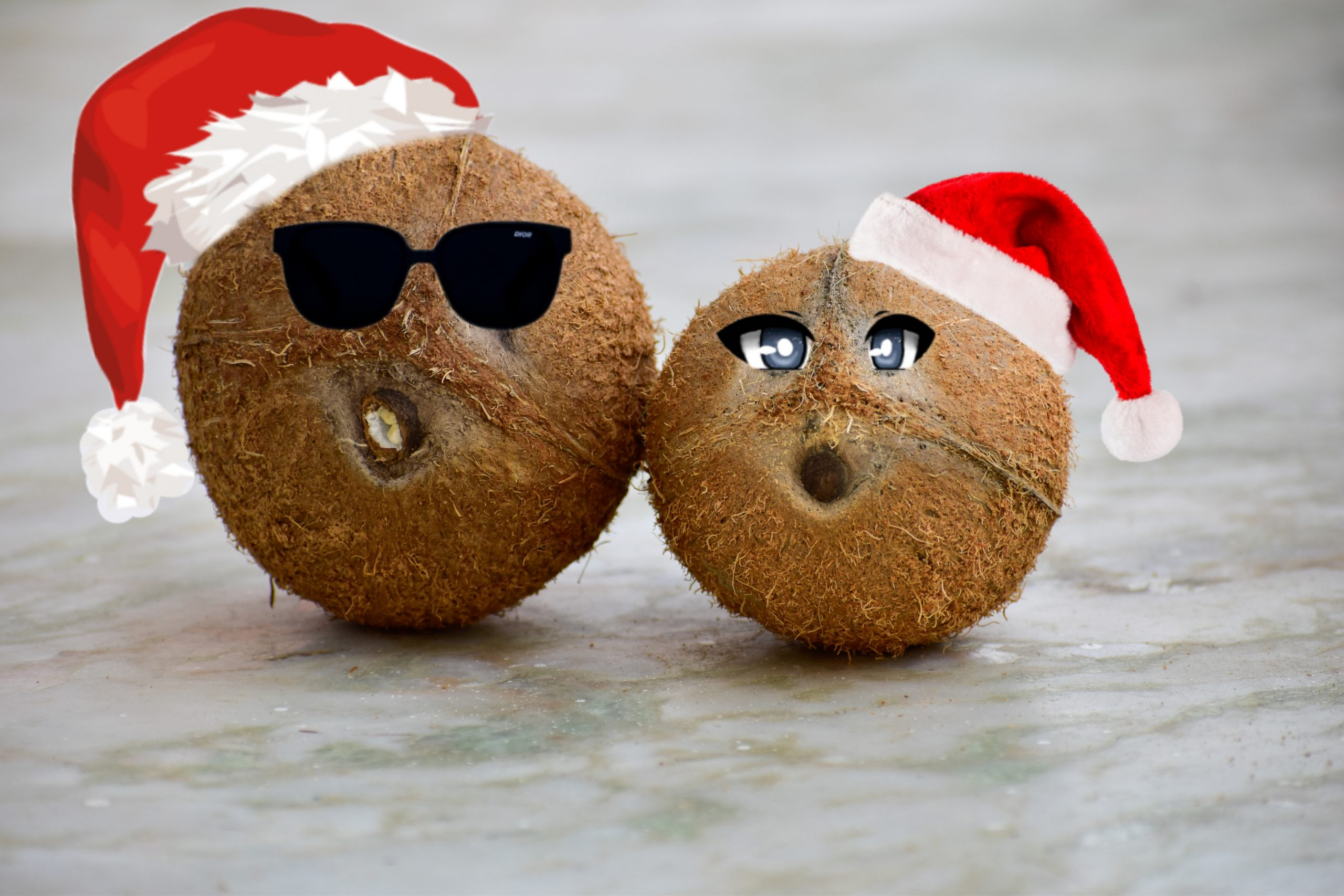 santa cap on coconut fruit