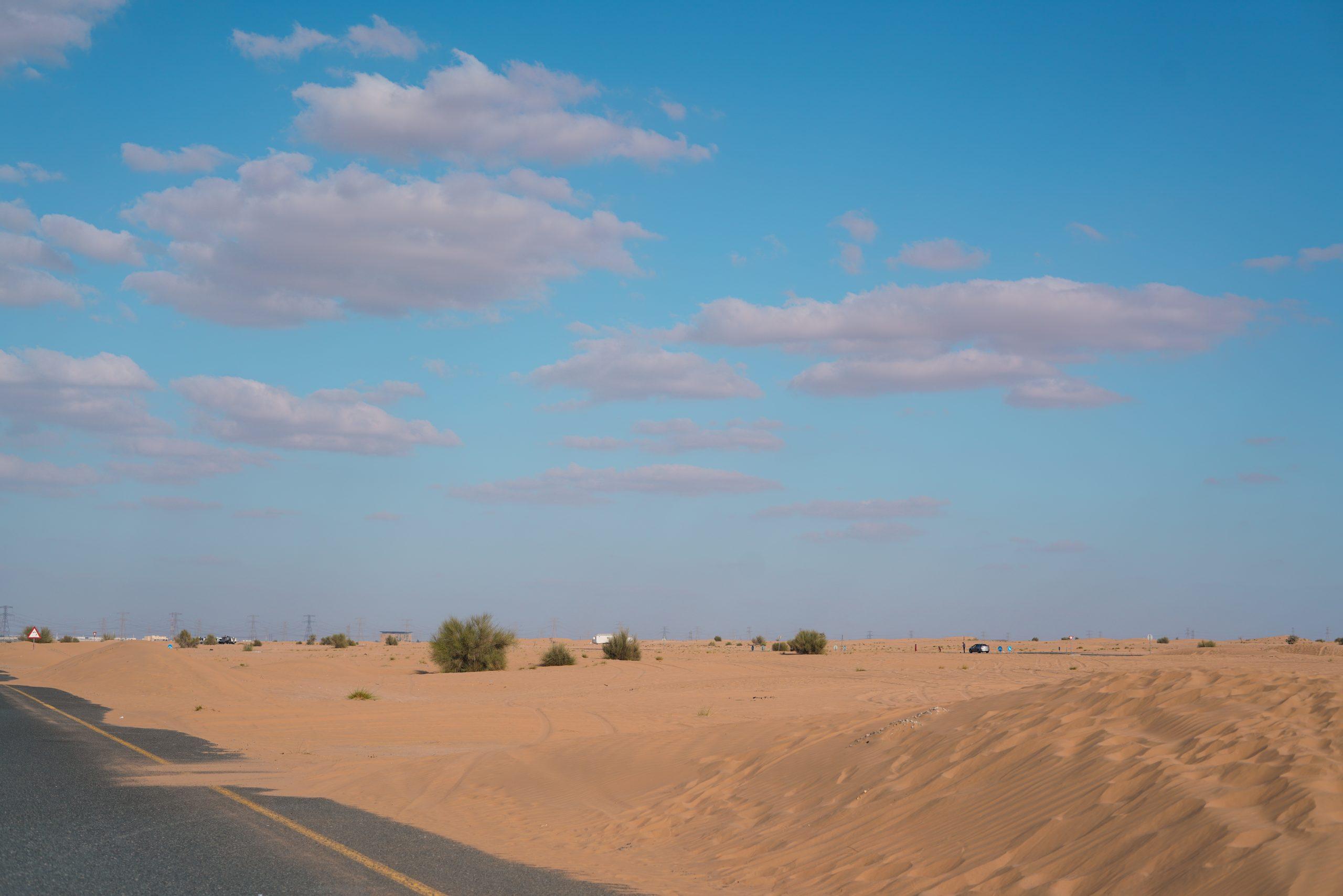 Desert beside a road