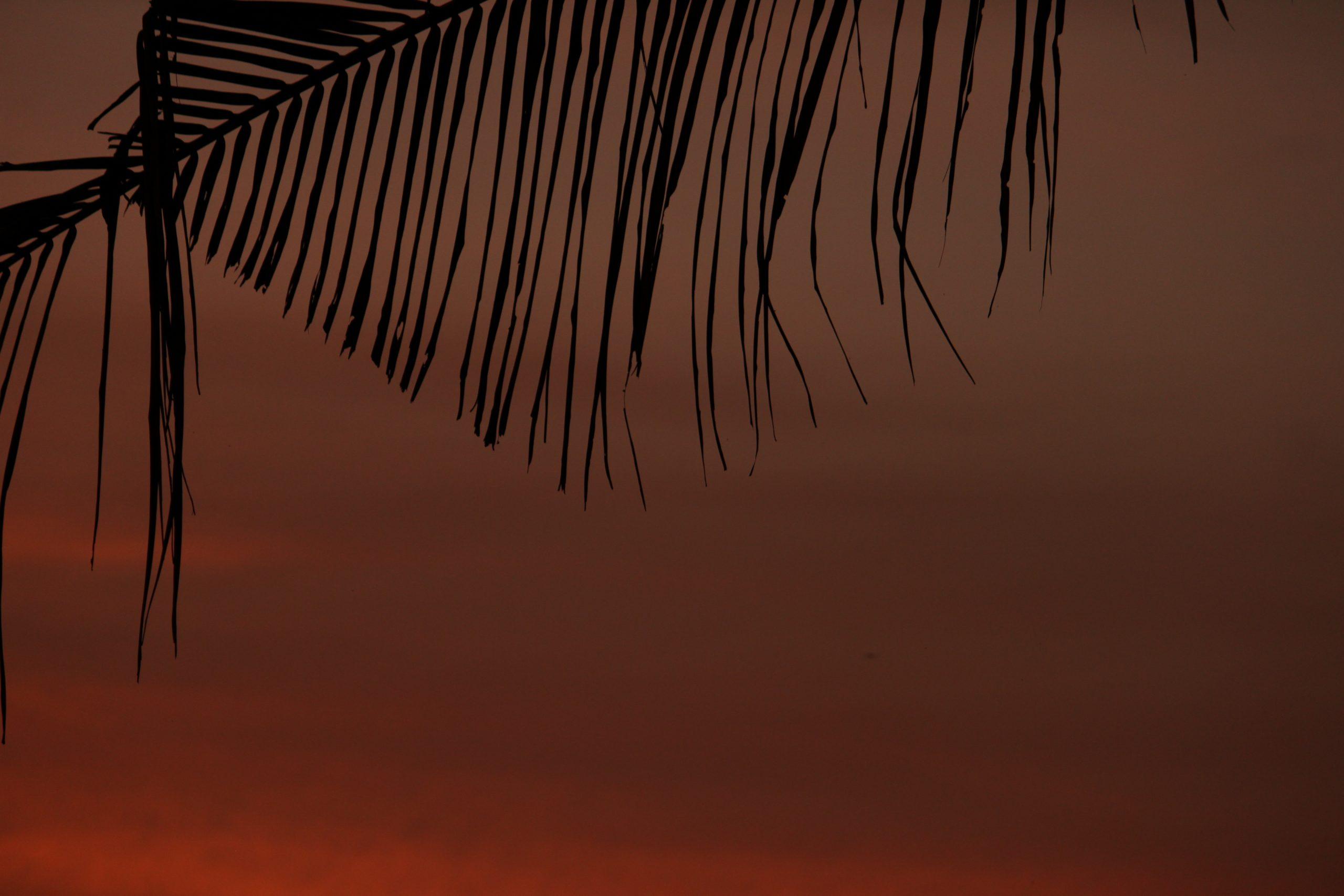 Evening hour