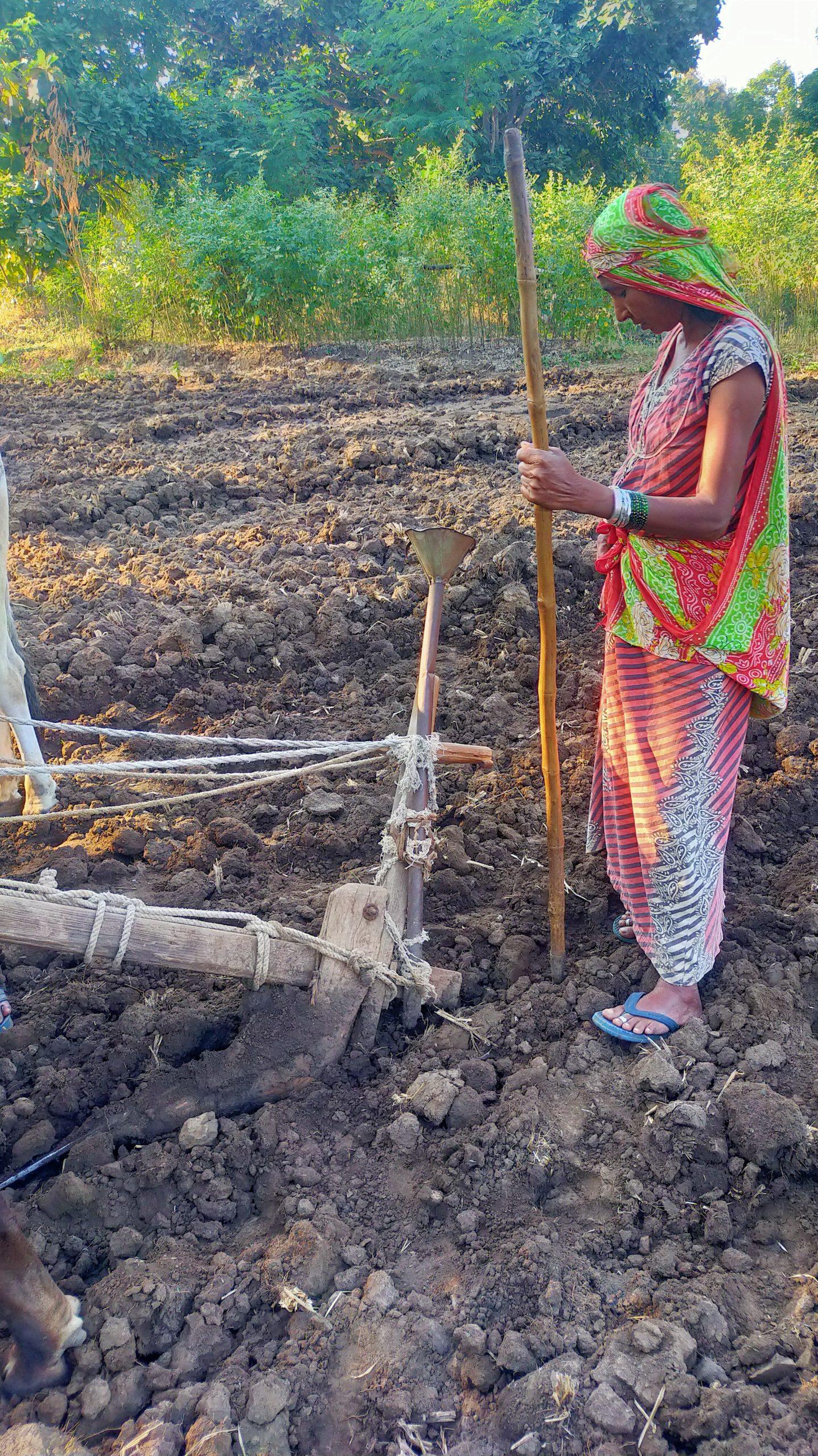 A lady farmer with a plough