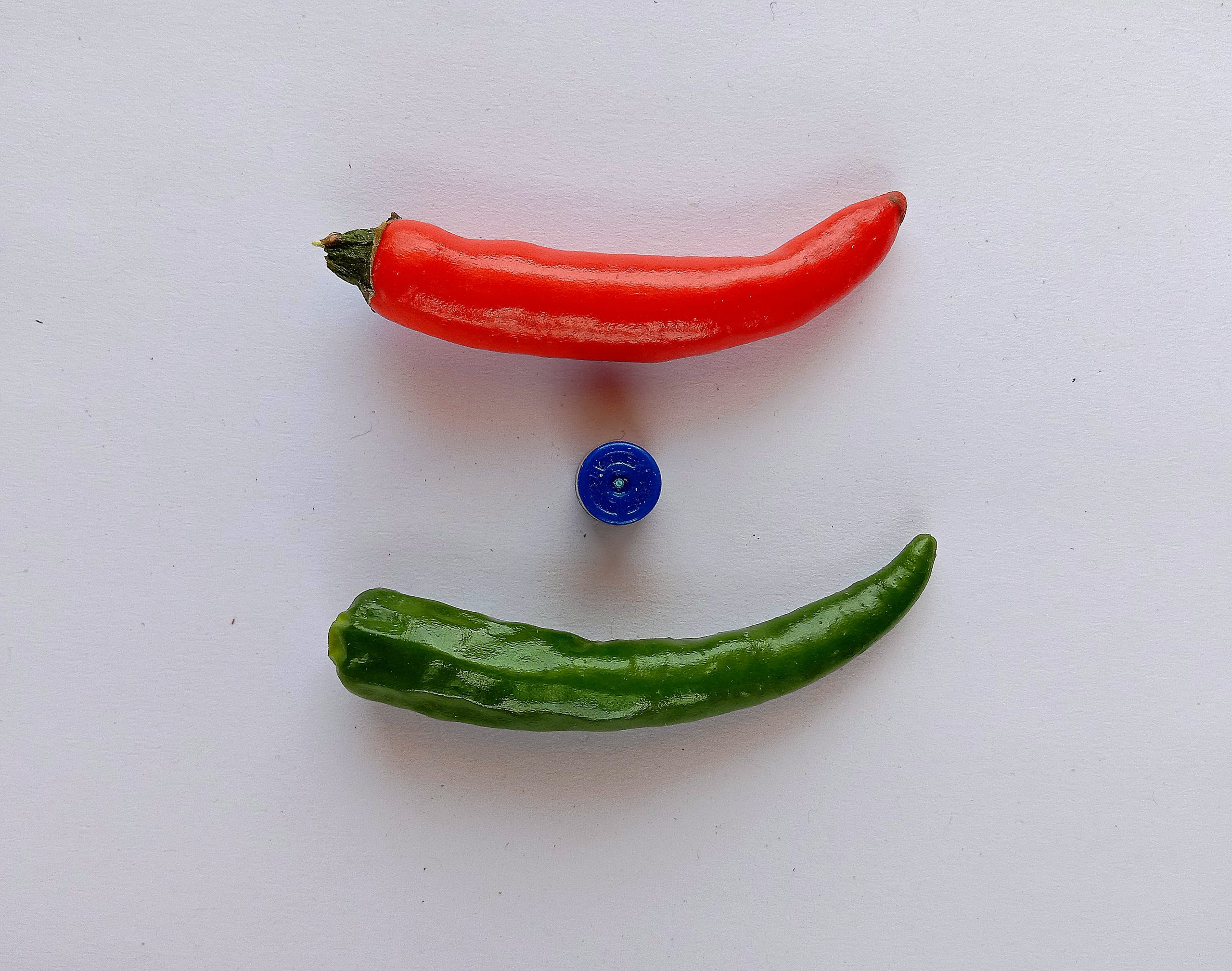 Chilies kept to imprint Indian Flag