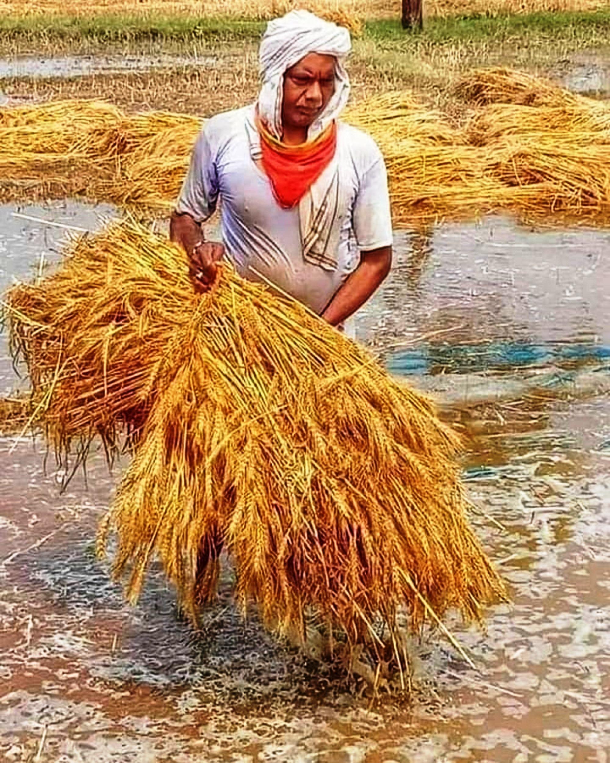 Man working in a field