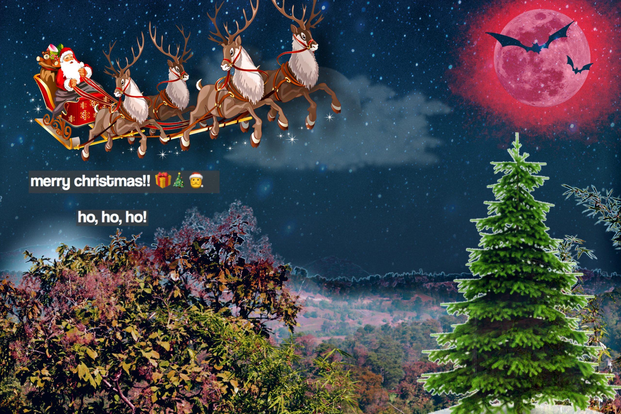 Marry Christmas greetings card