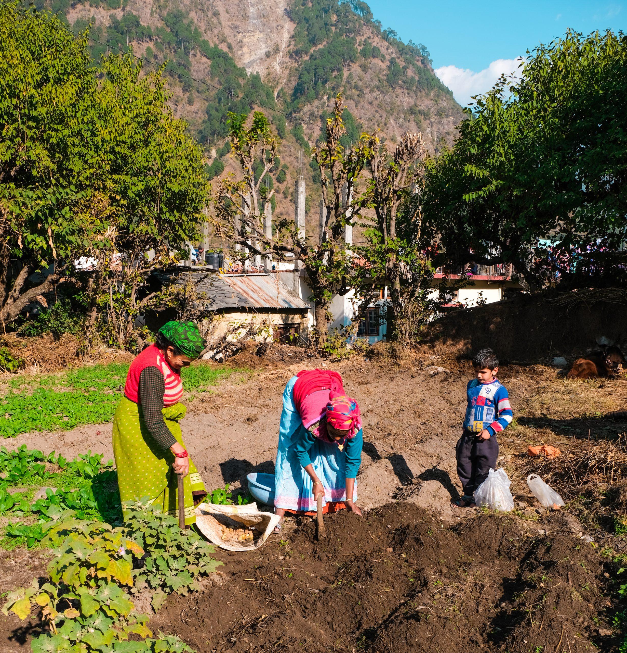 Mountain farmers working