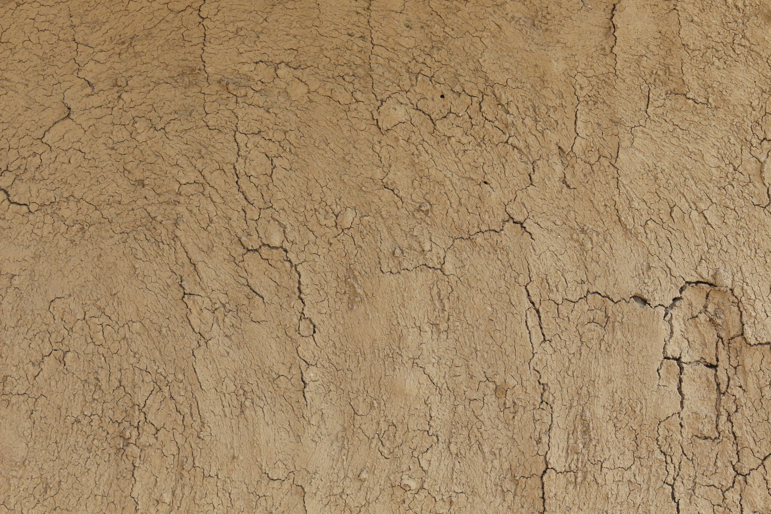A mud wall