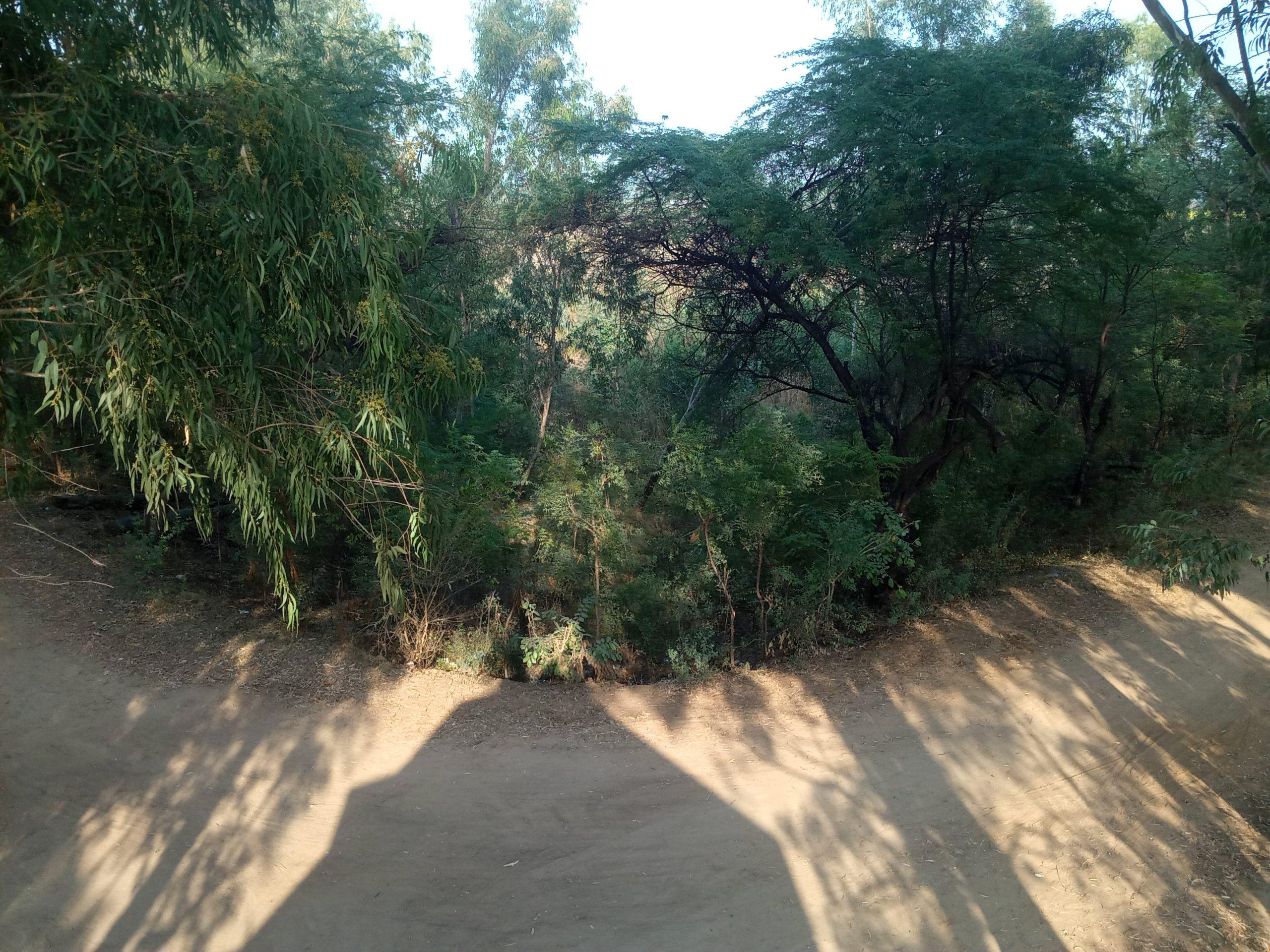 Image Of Dirt Image