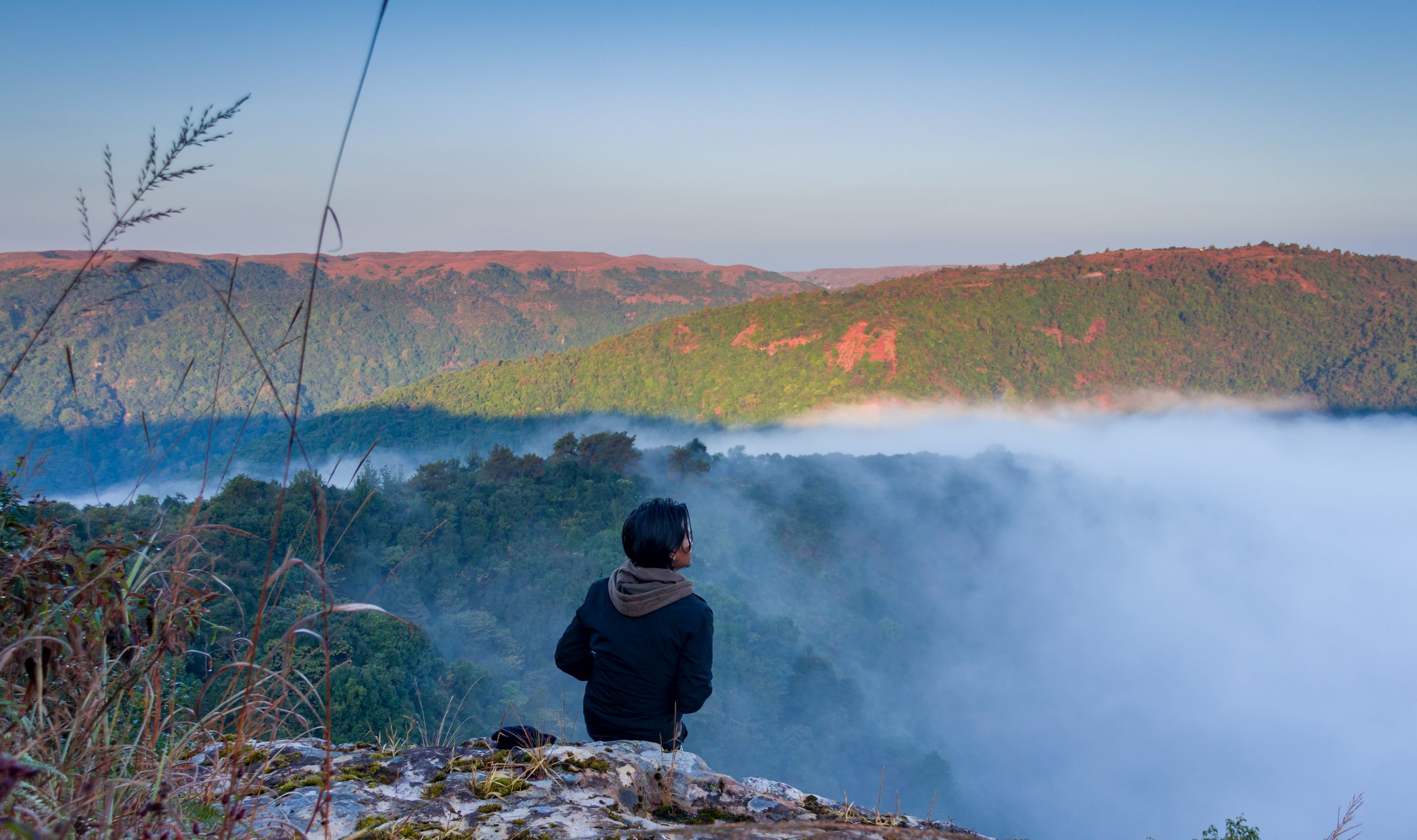 A boy enjoying the nature
