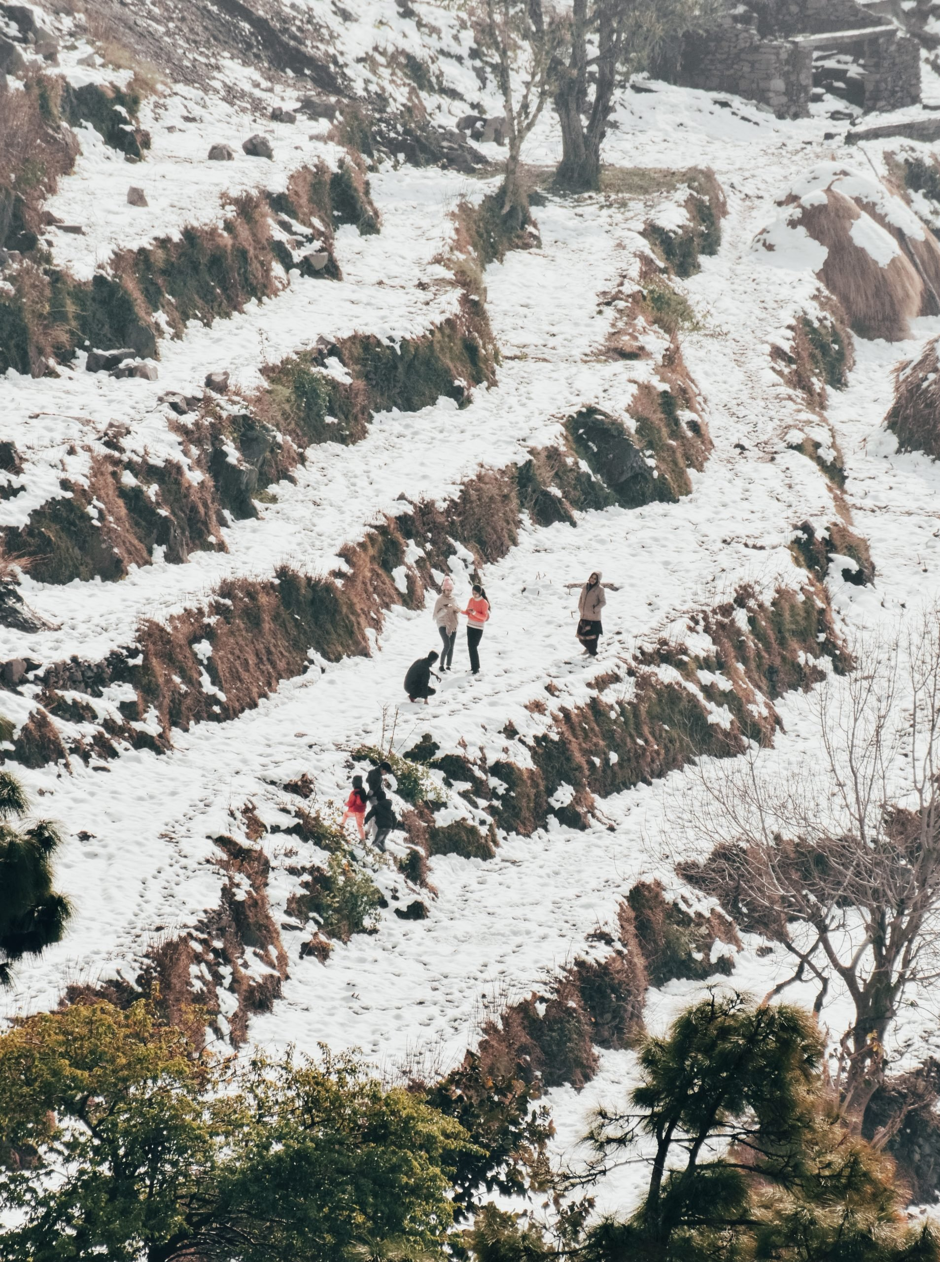 People at snowy fields of mountains