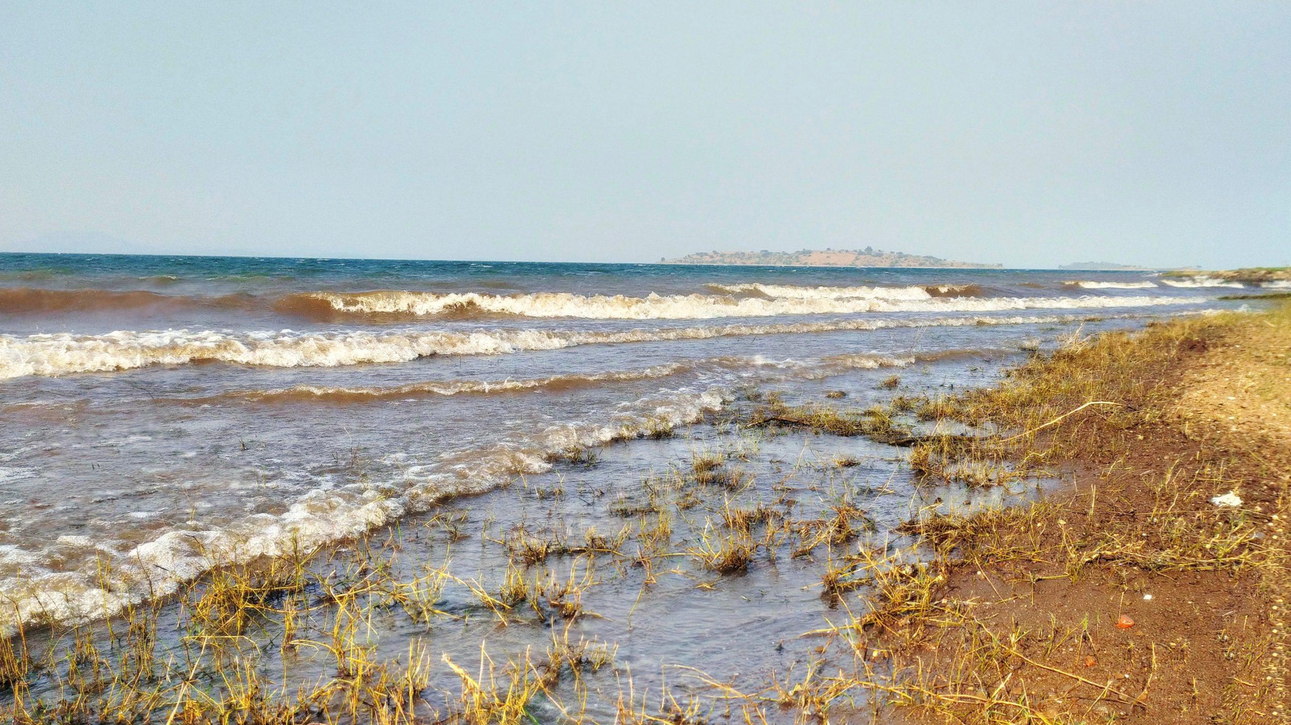 Selud beach Gujarat