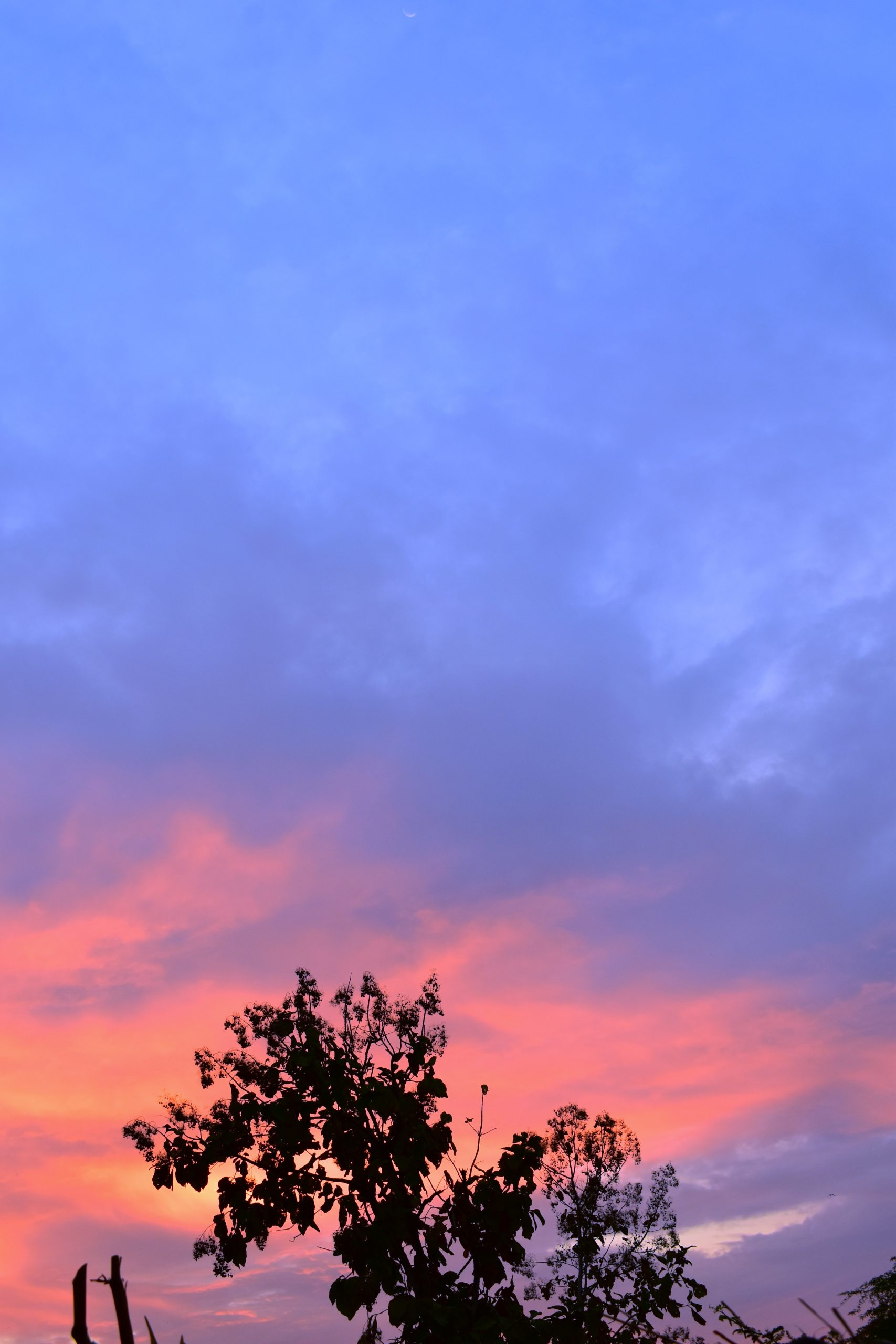 Sky during morning