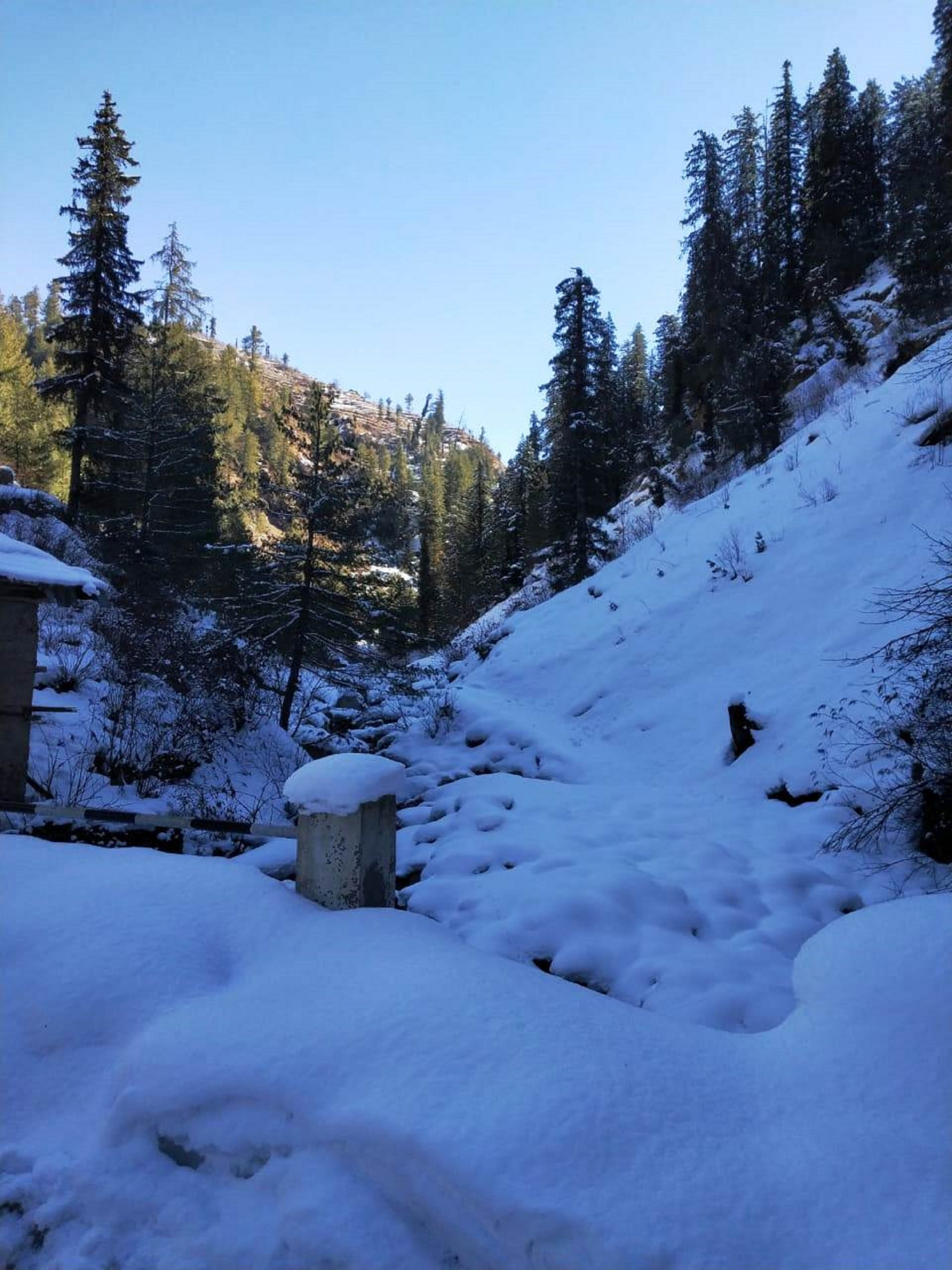 Snow cover in a hill station