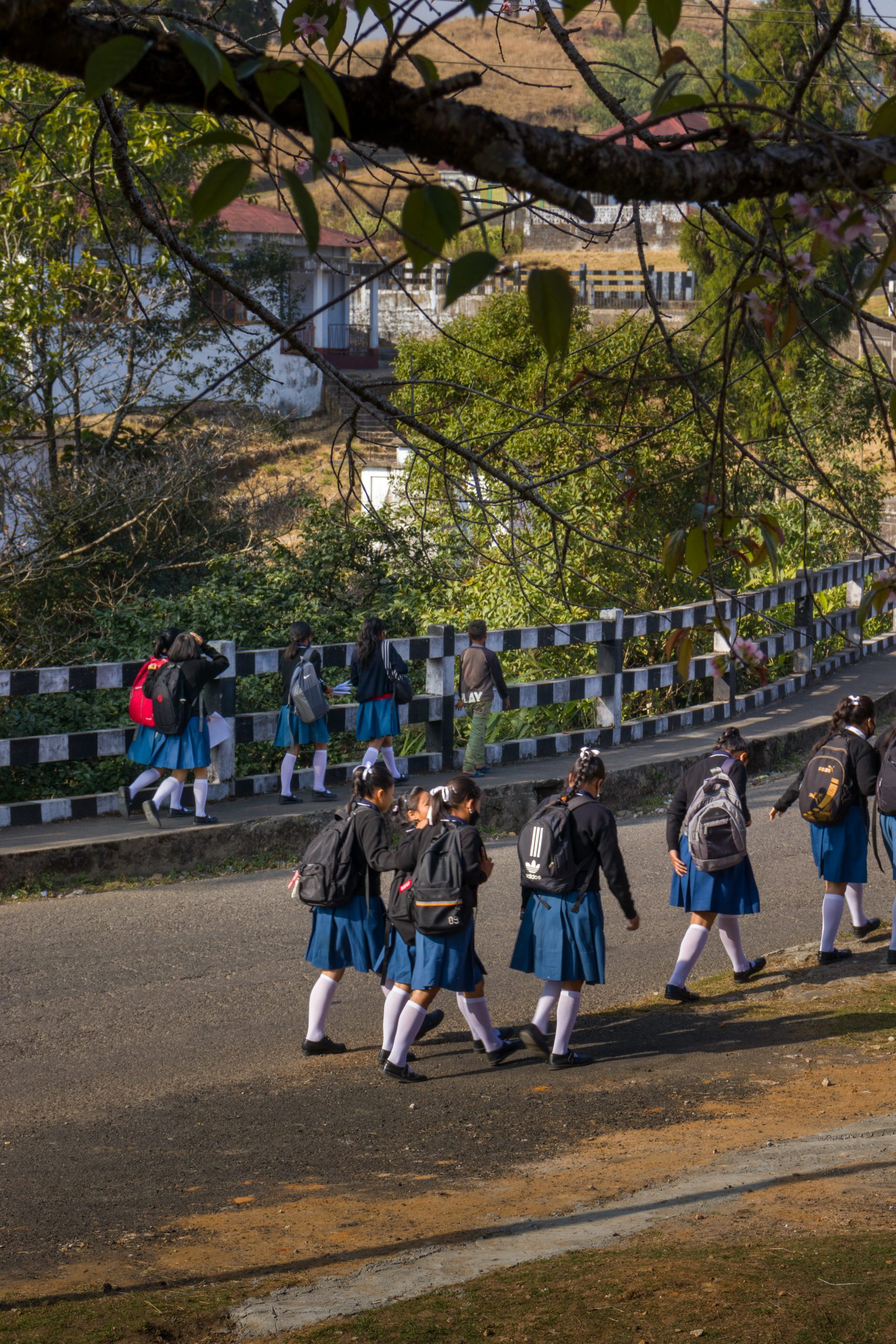 Girls going to school