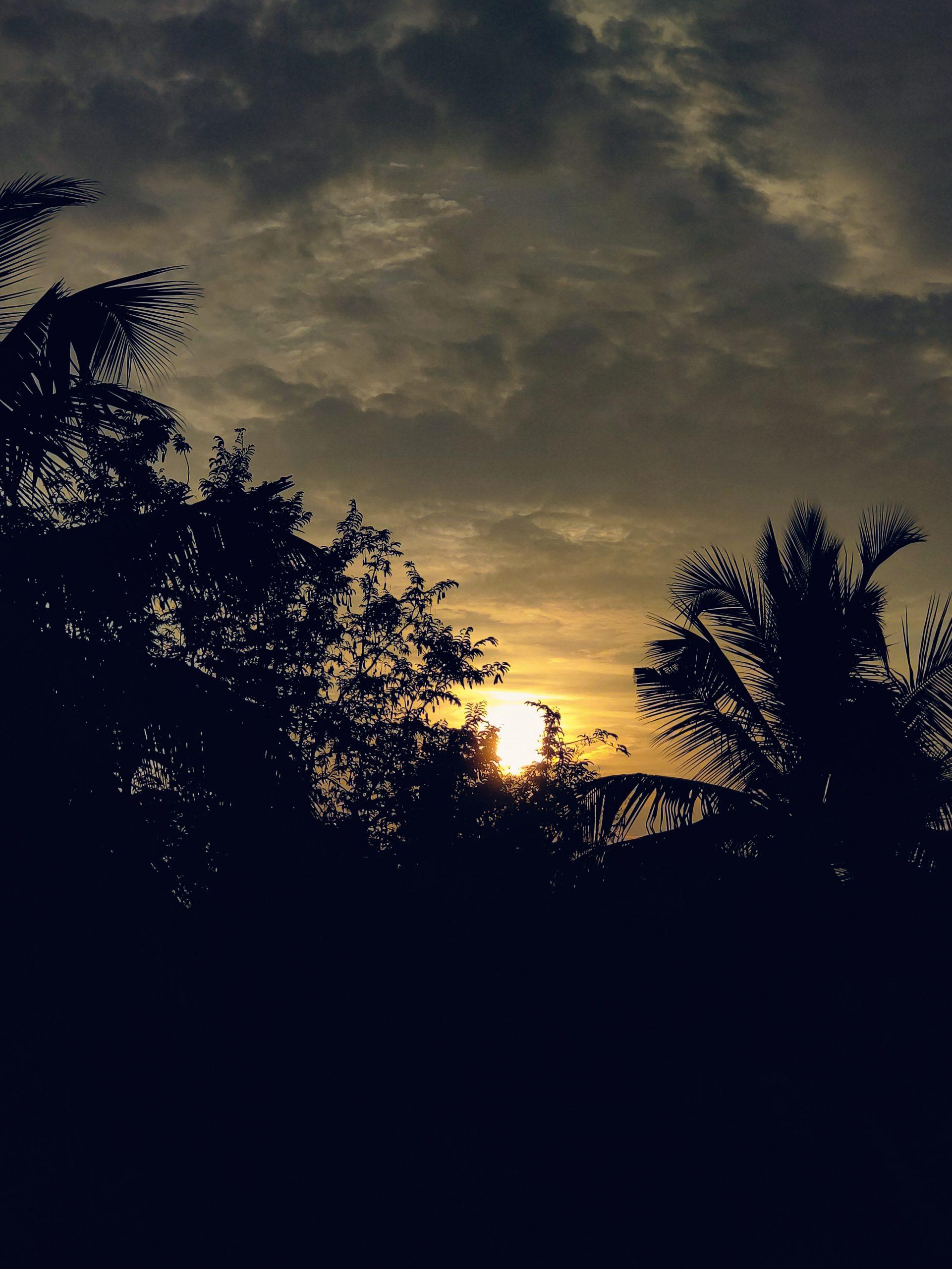 Sunset view