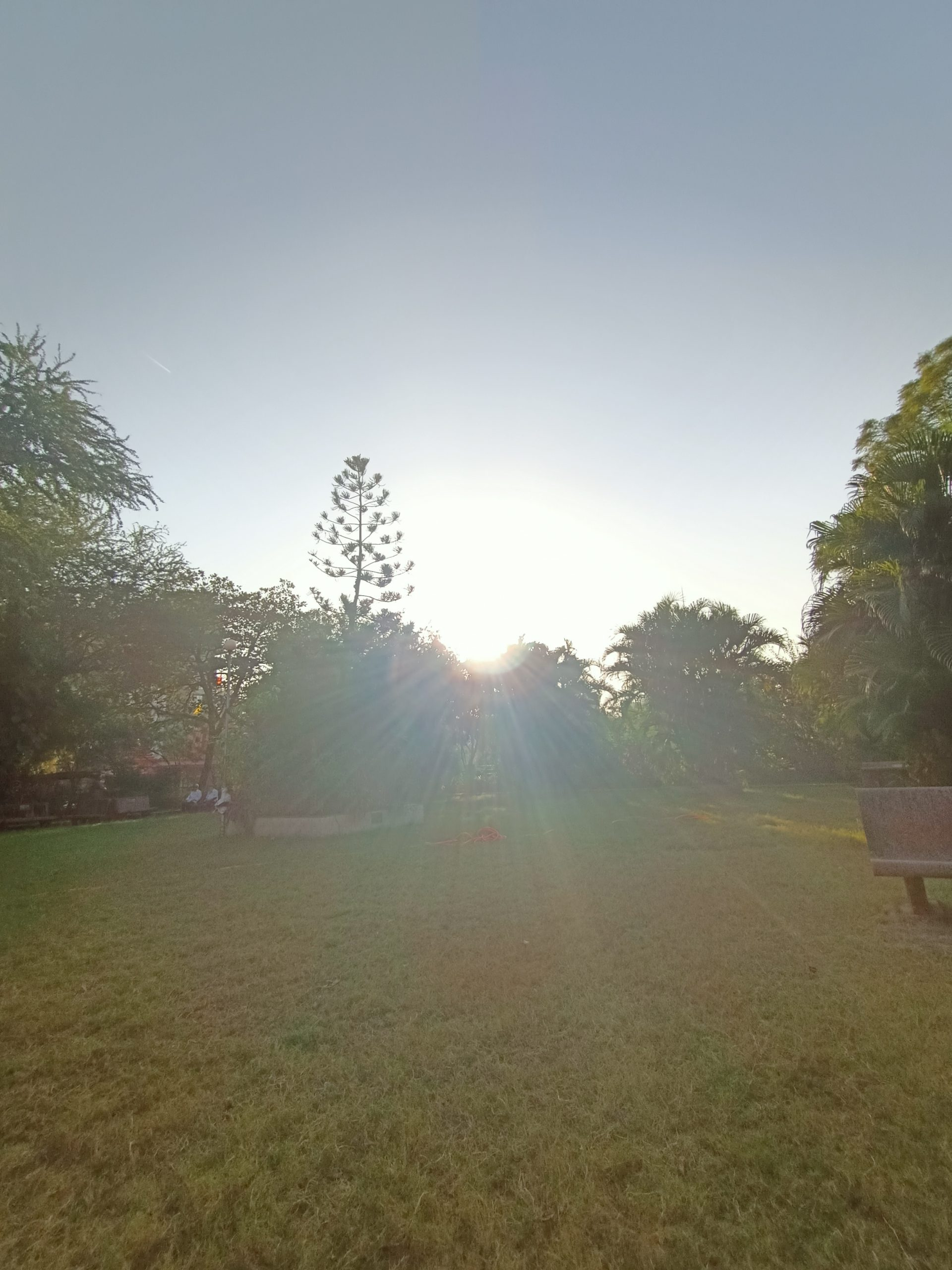 Sunset through a park