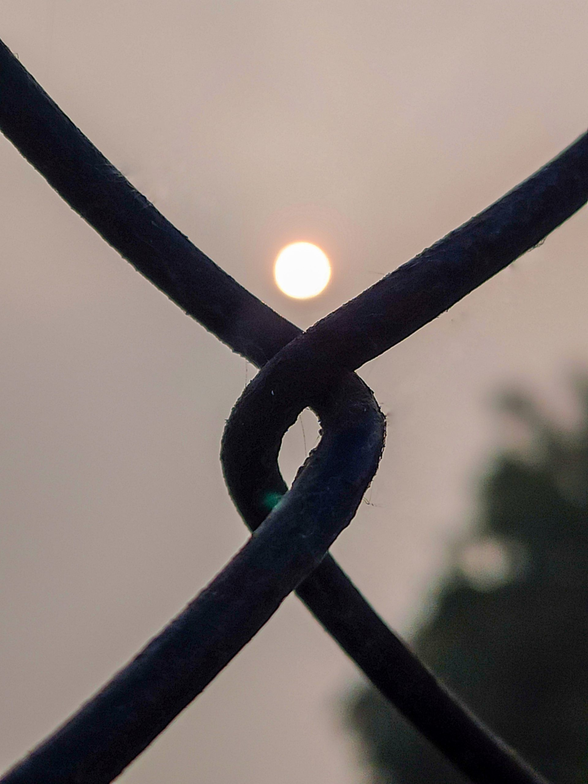 Sunset through locked wires