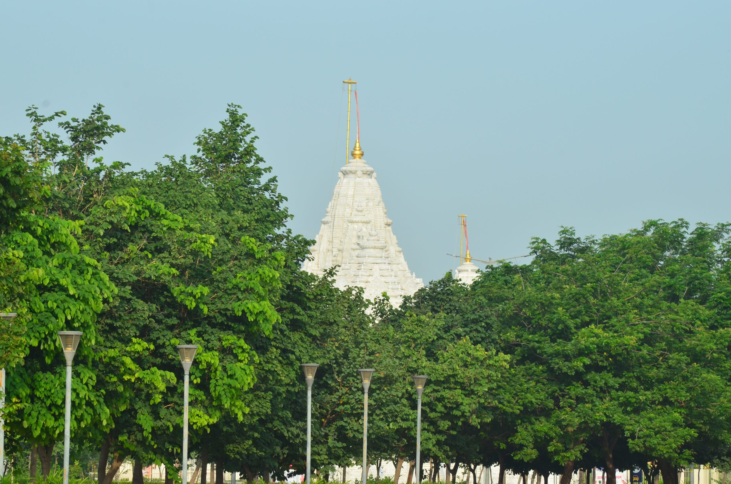 temple behind trees