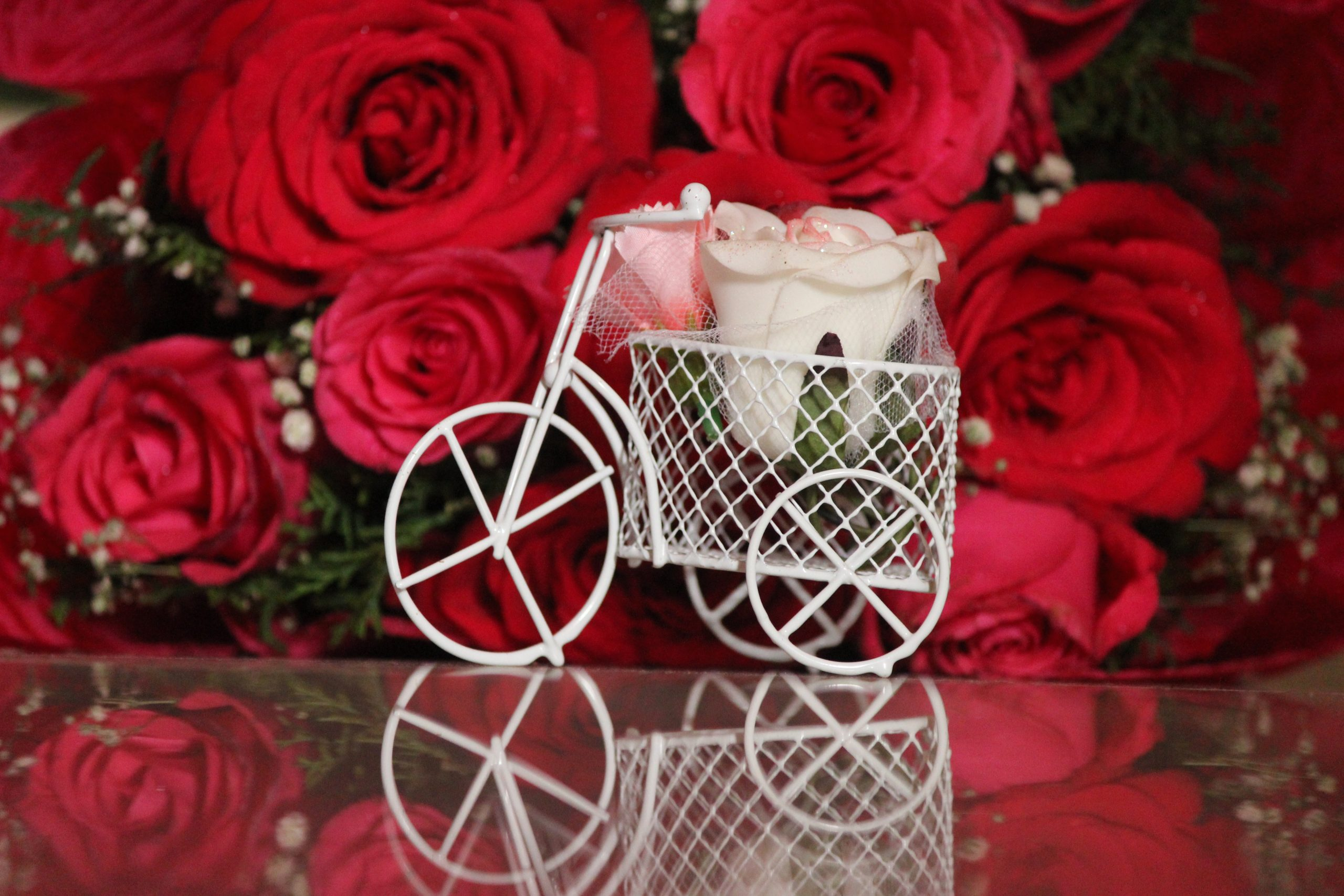 Small bicycle and roses