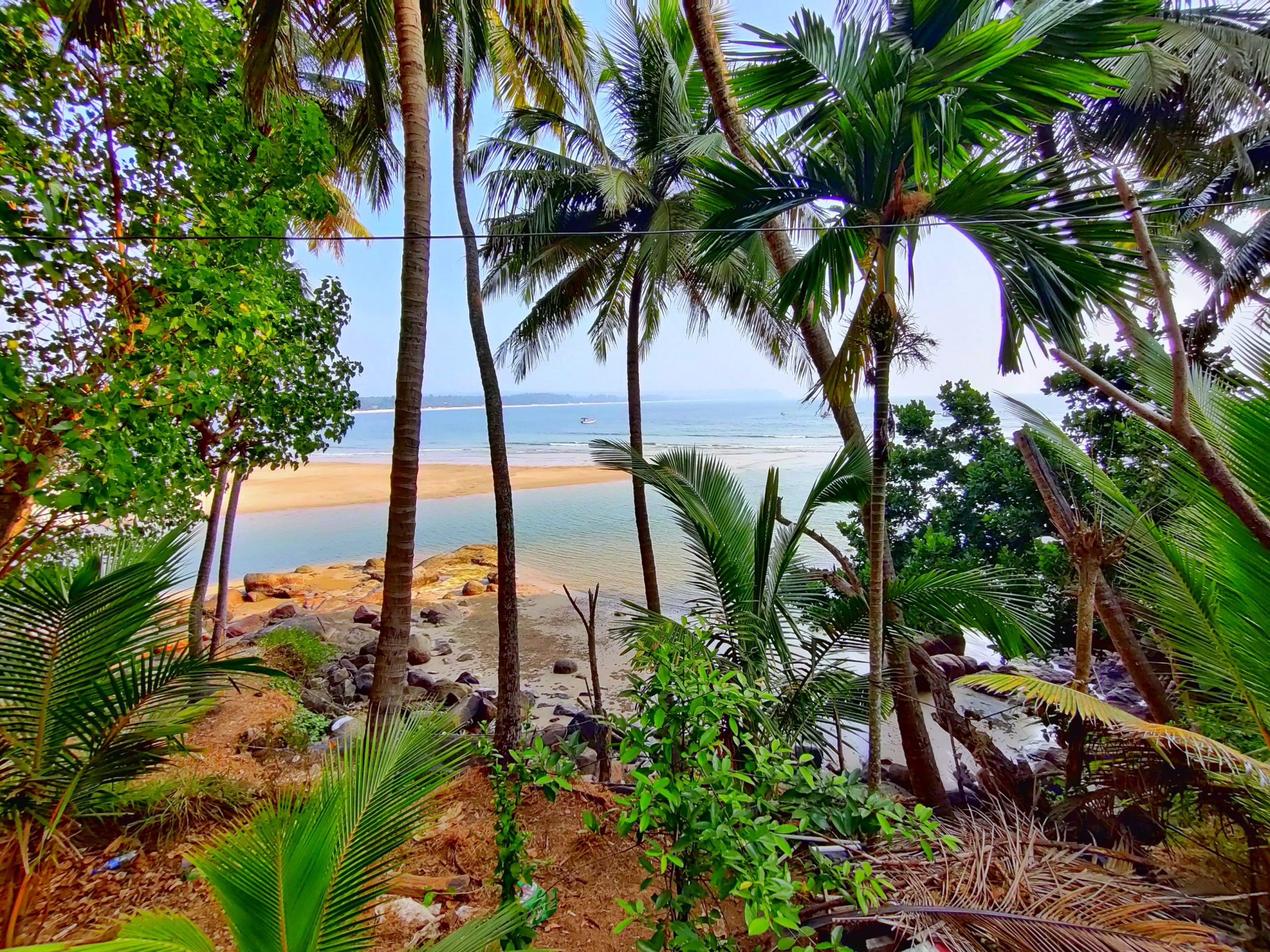 Beautiful Scene of Beach and greenery