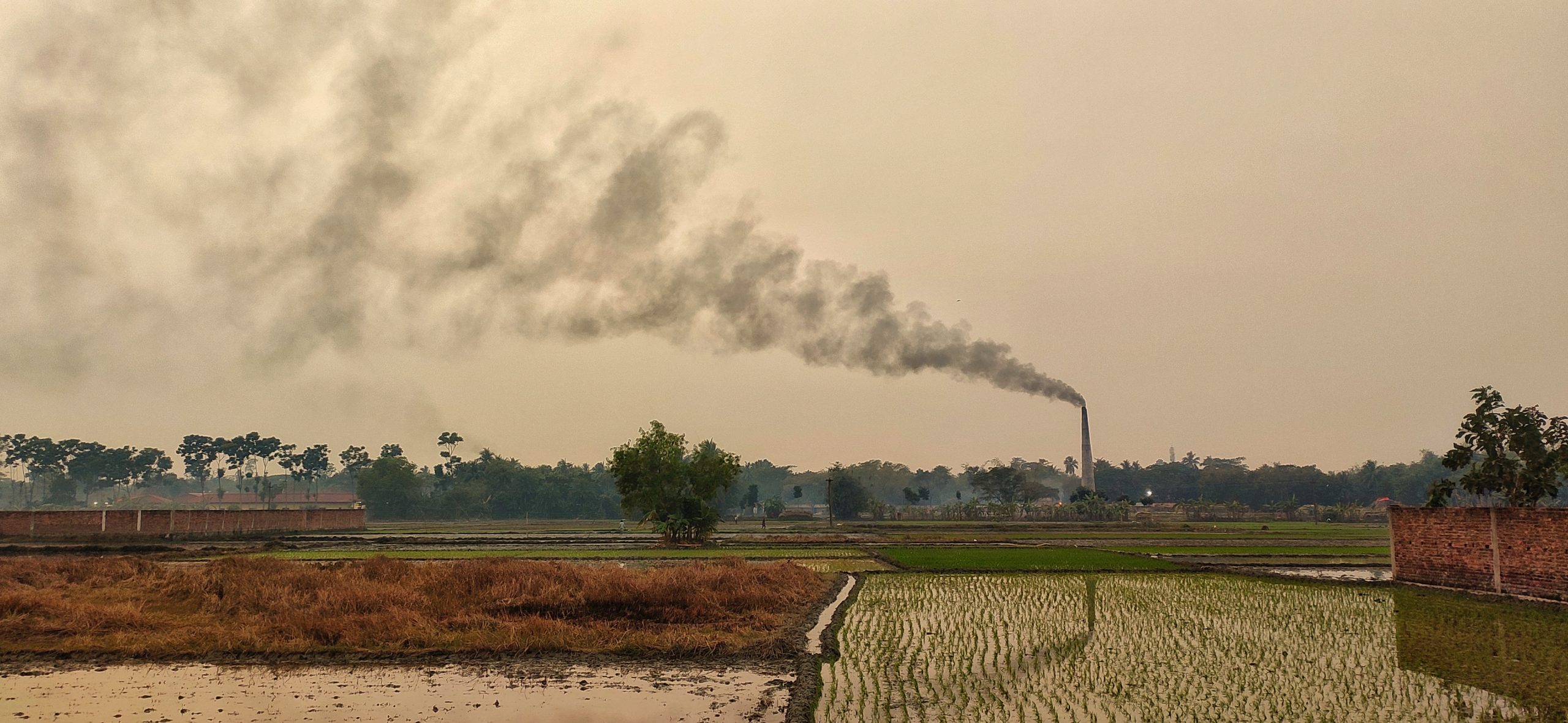 Smoke pollution near agriculture land