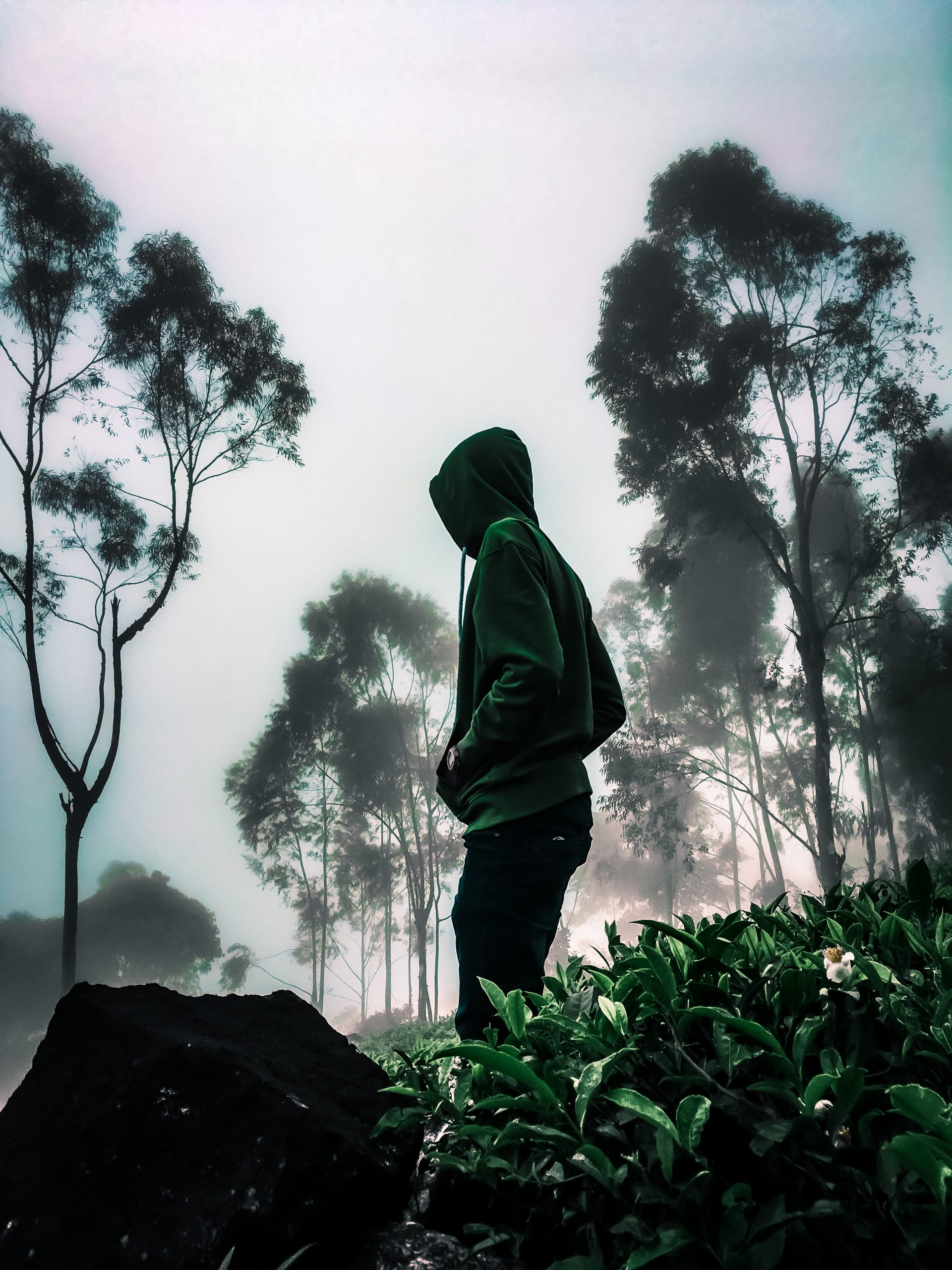 A hoodie boy on a hill