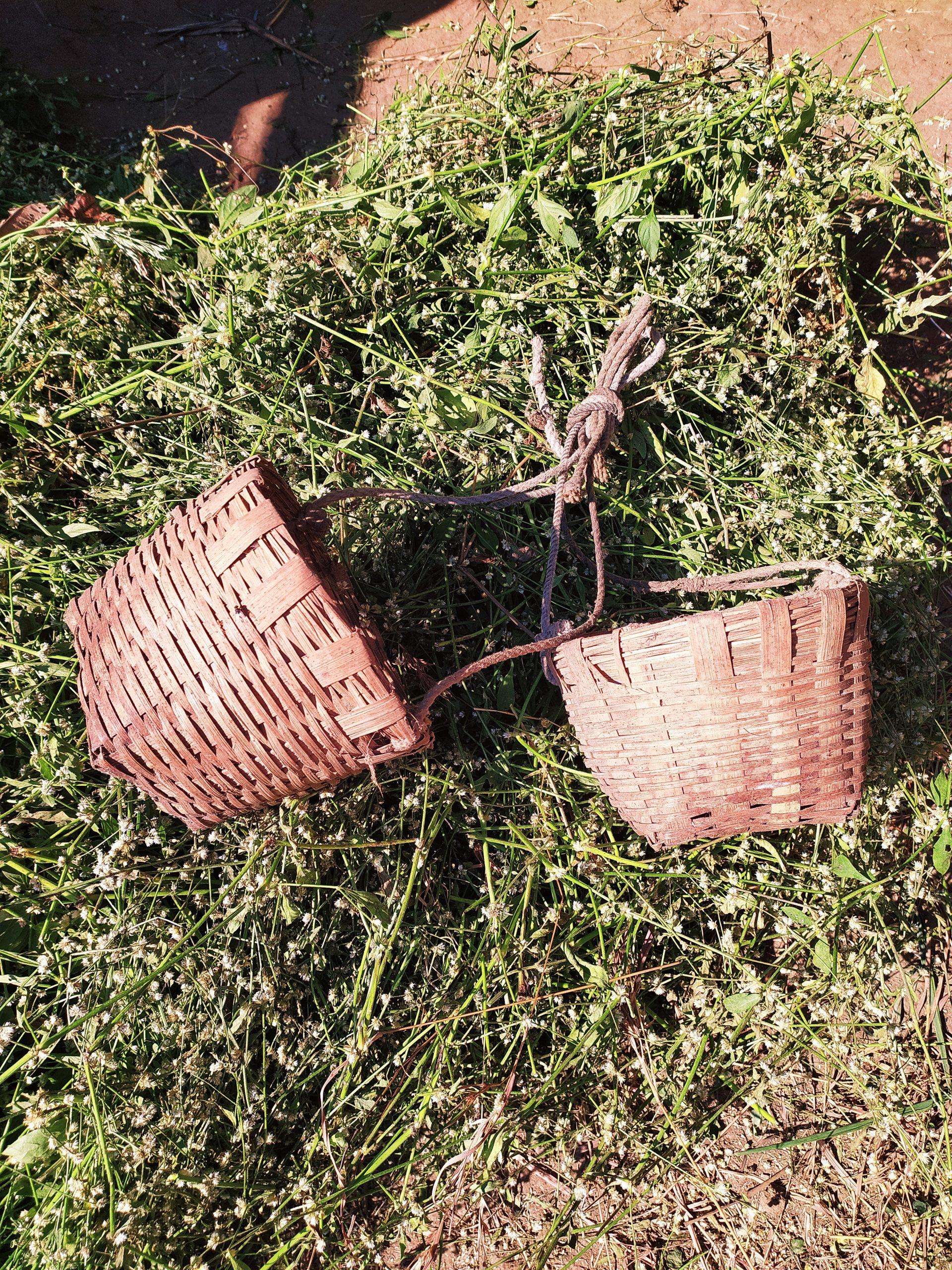 Wooden baskets of farmers