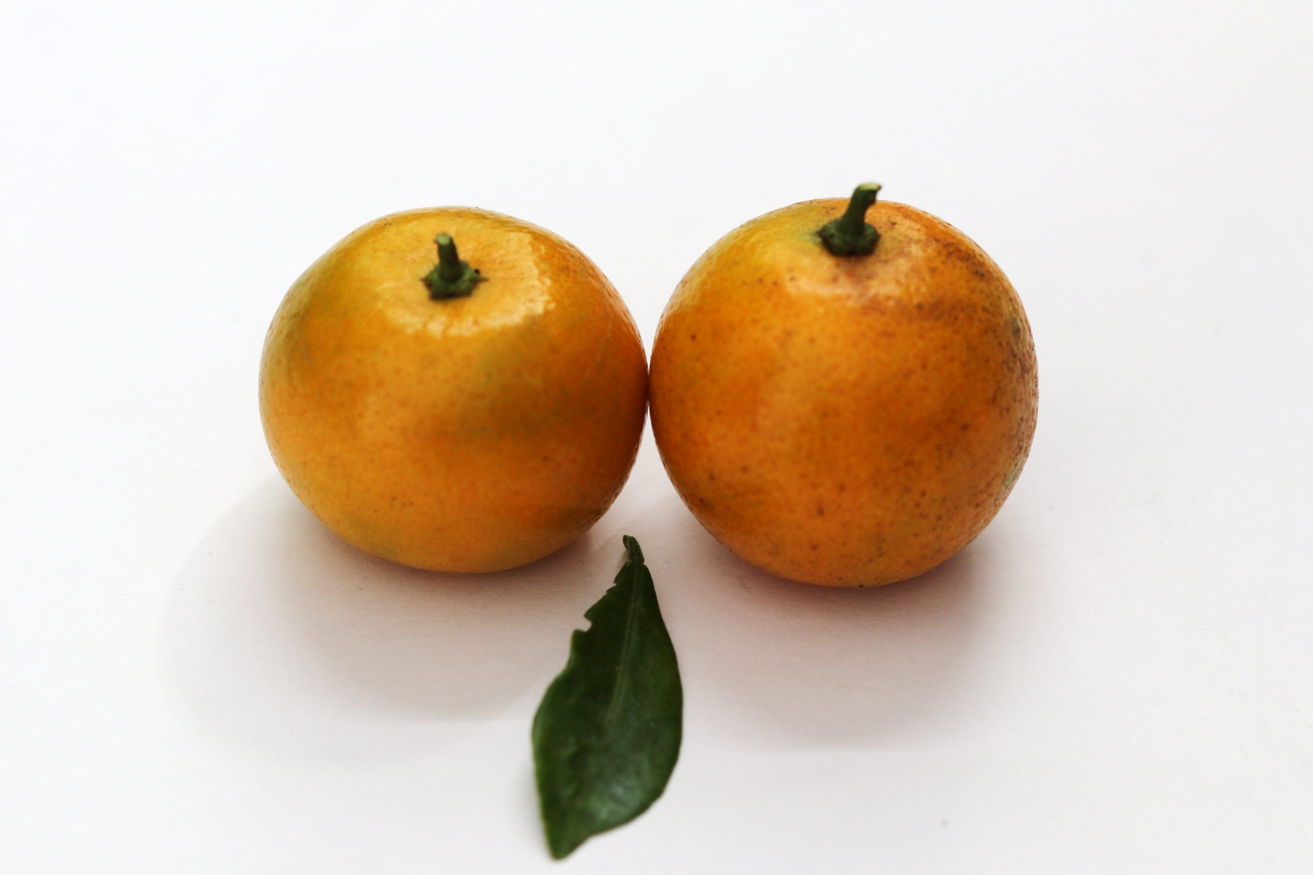 pair of oranges