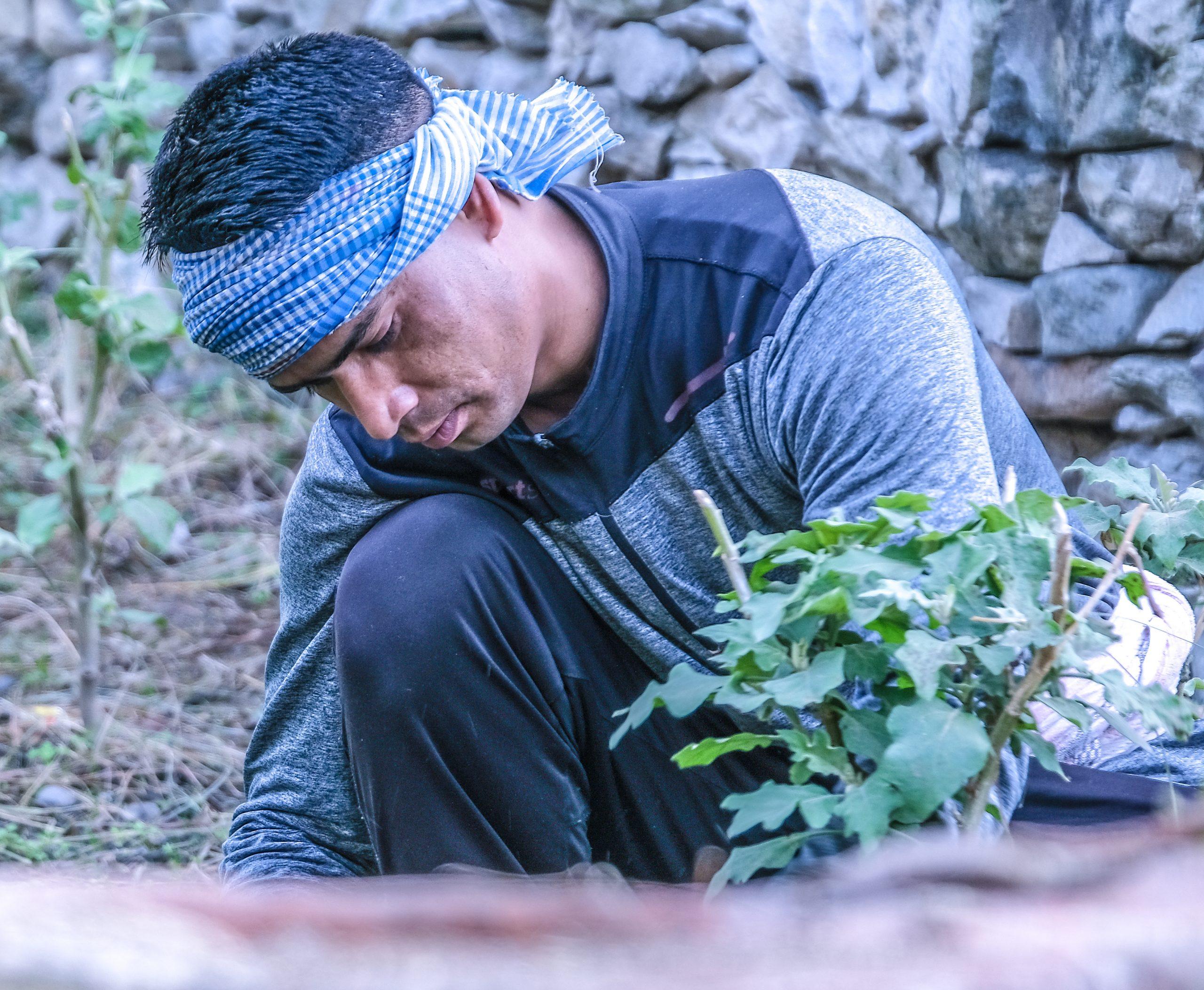 A farmer working in a field