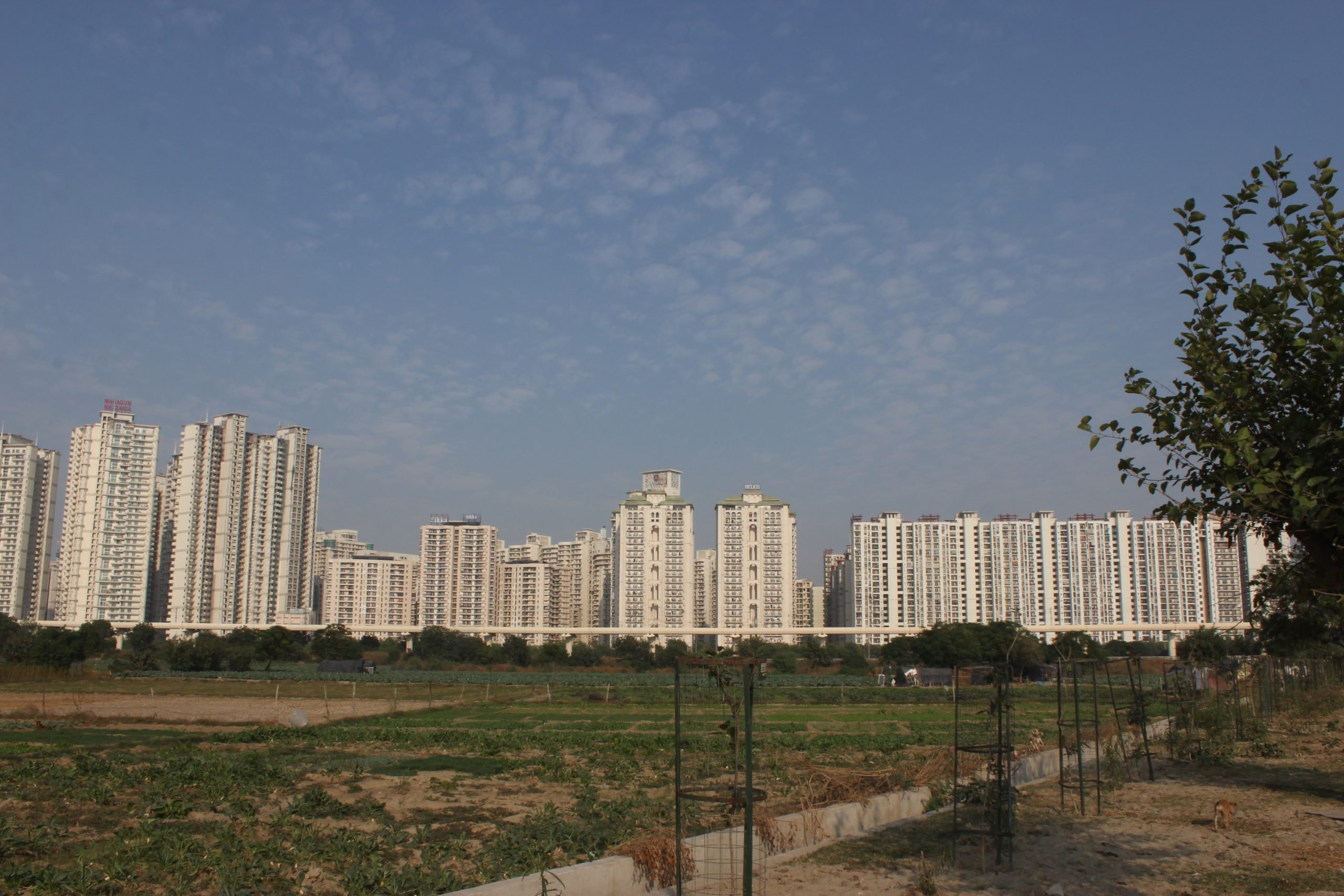 Tall buildings of Noida city