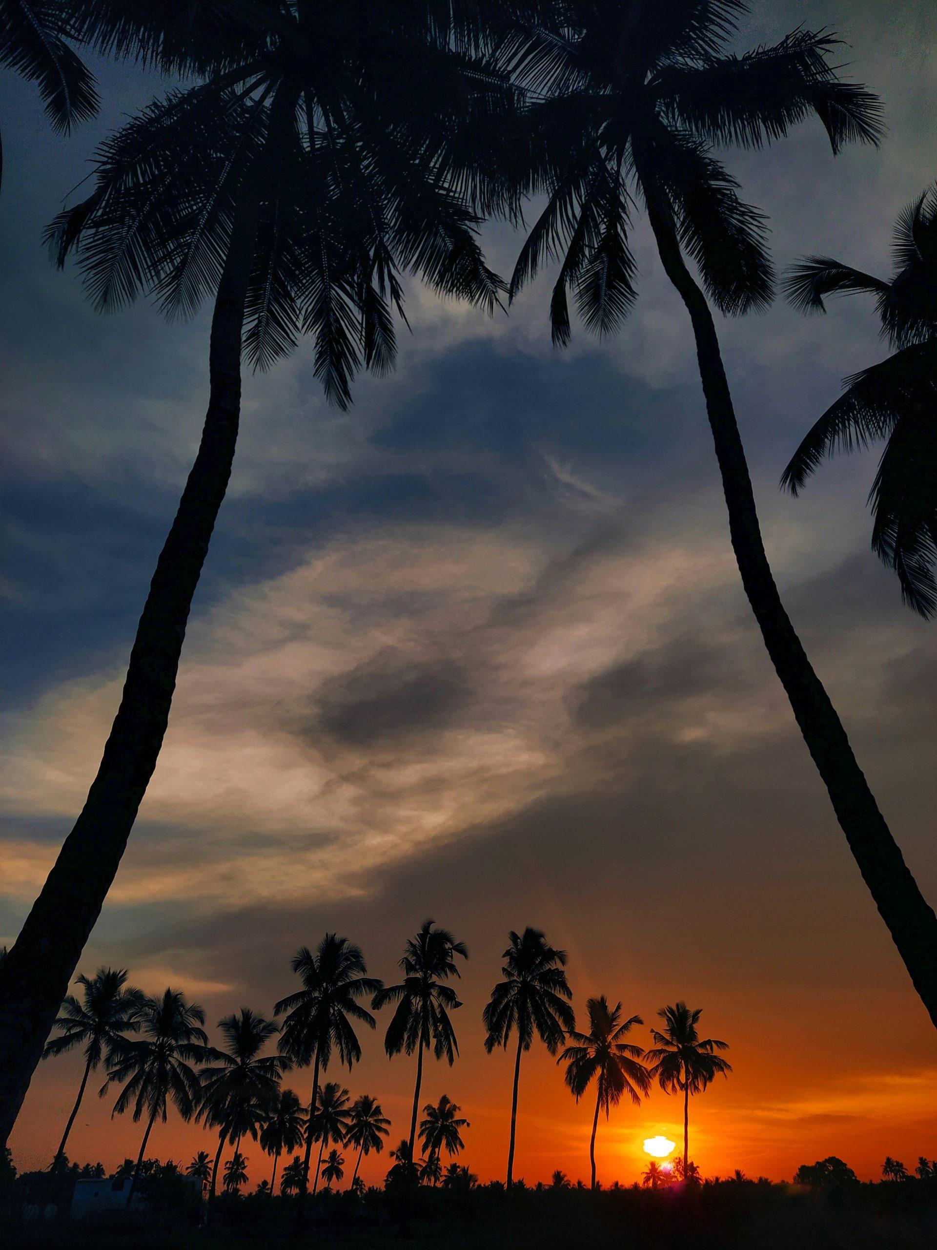 Sunrise in Kodinar
