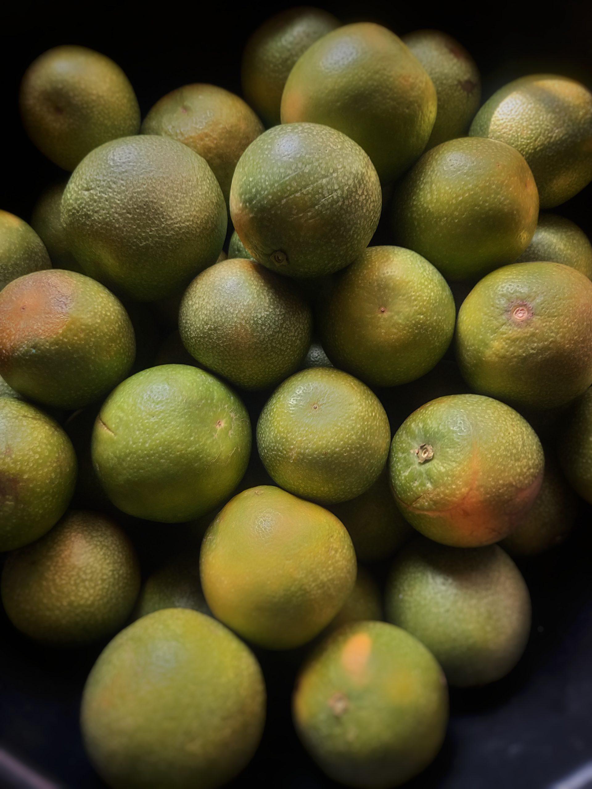 Sweet lime fruits