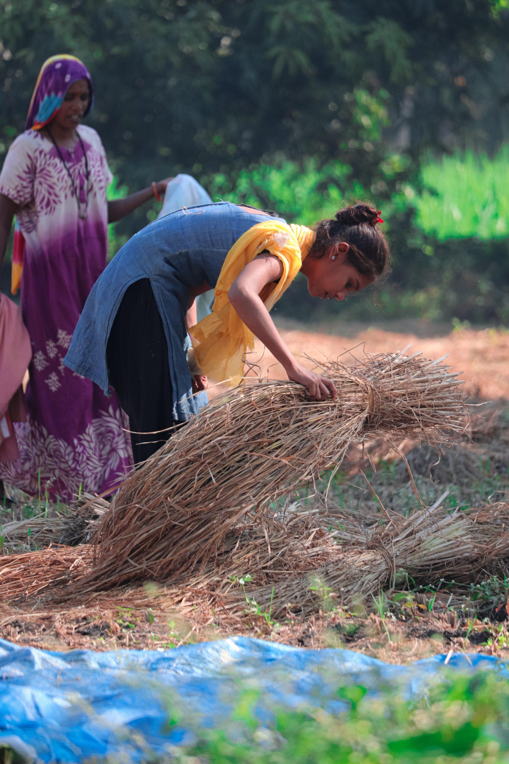 Female farmers working in a field