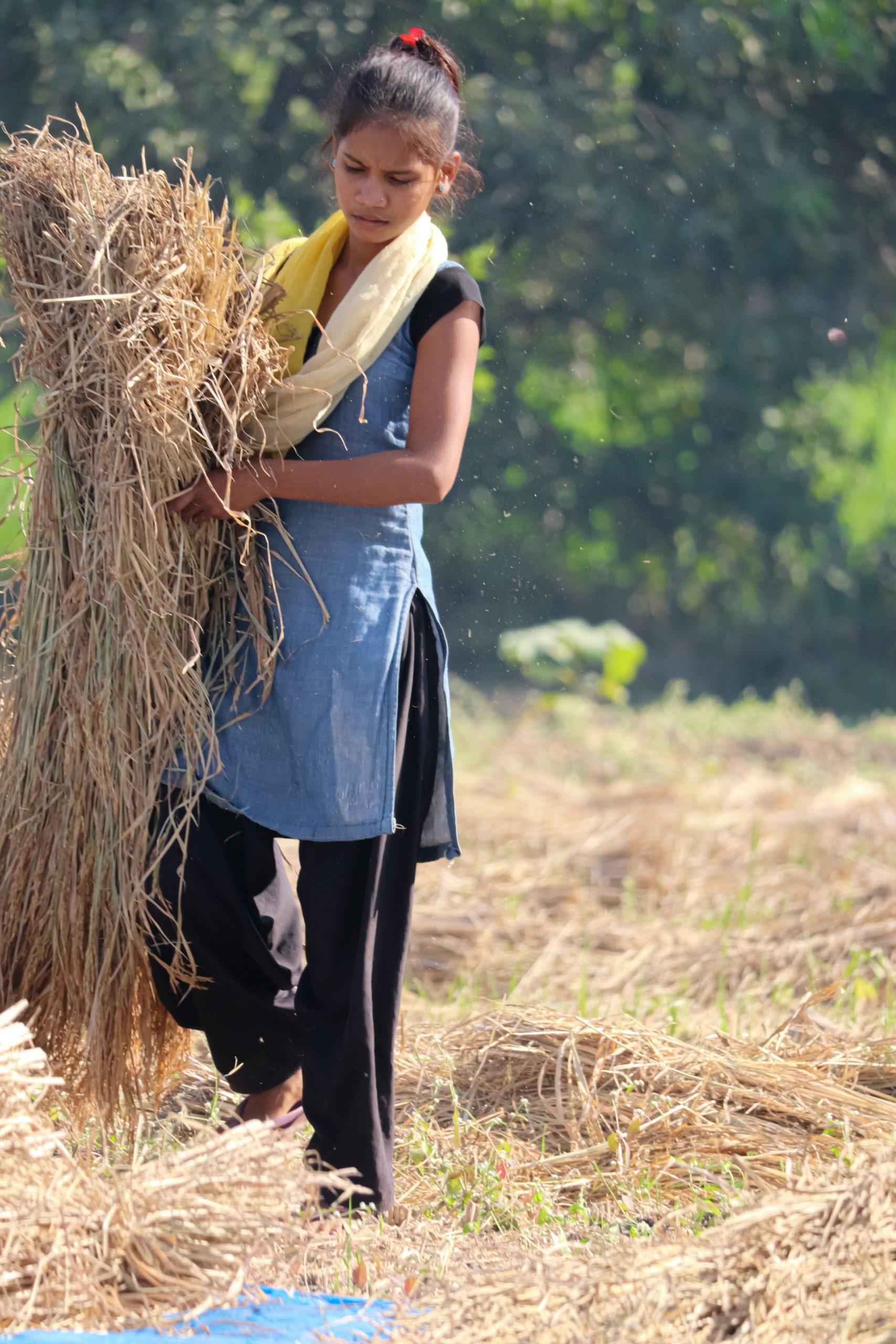 Girl moving hay