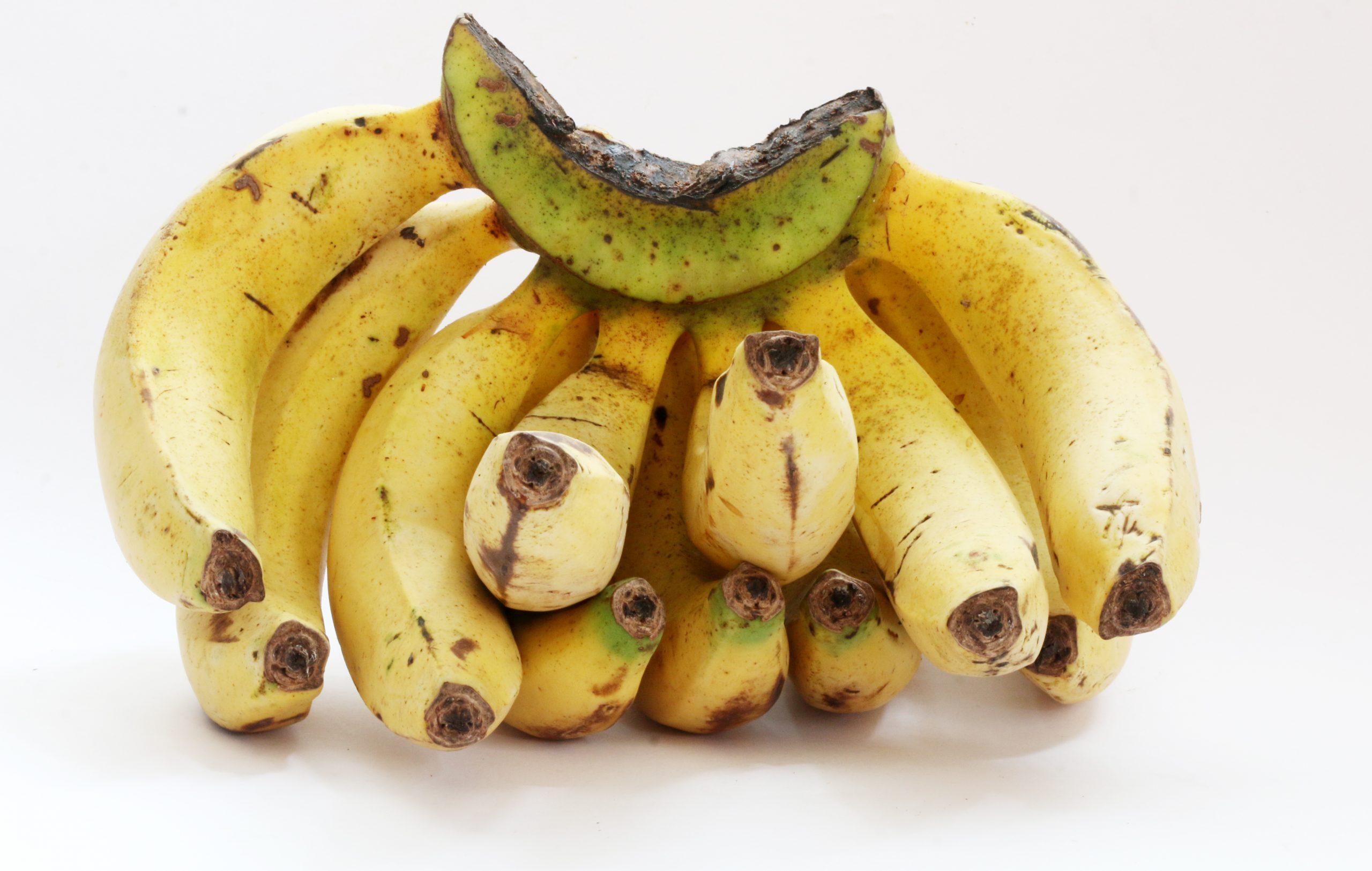 A banana cluster