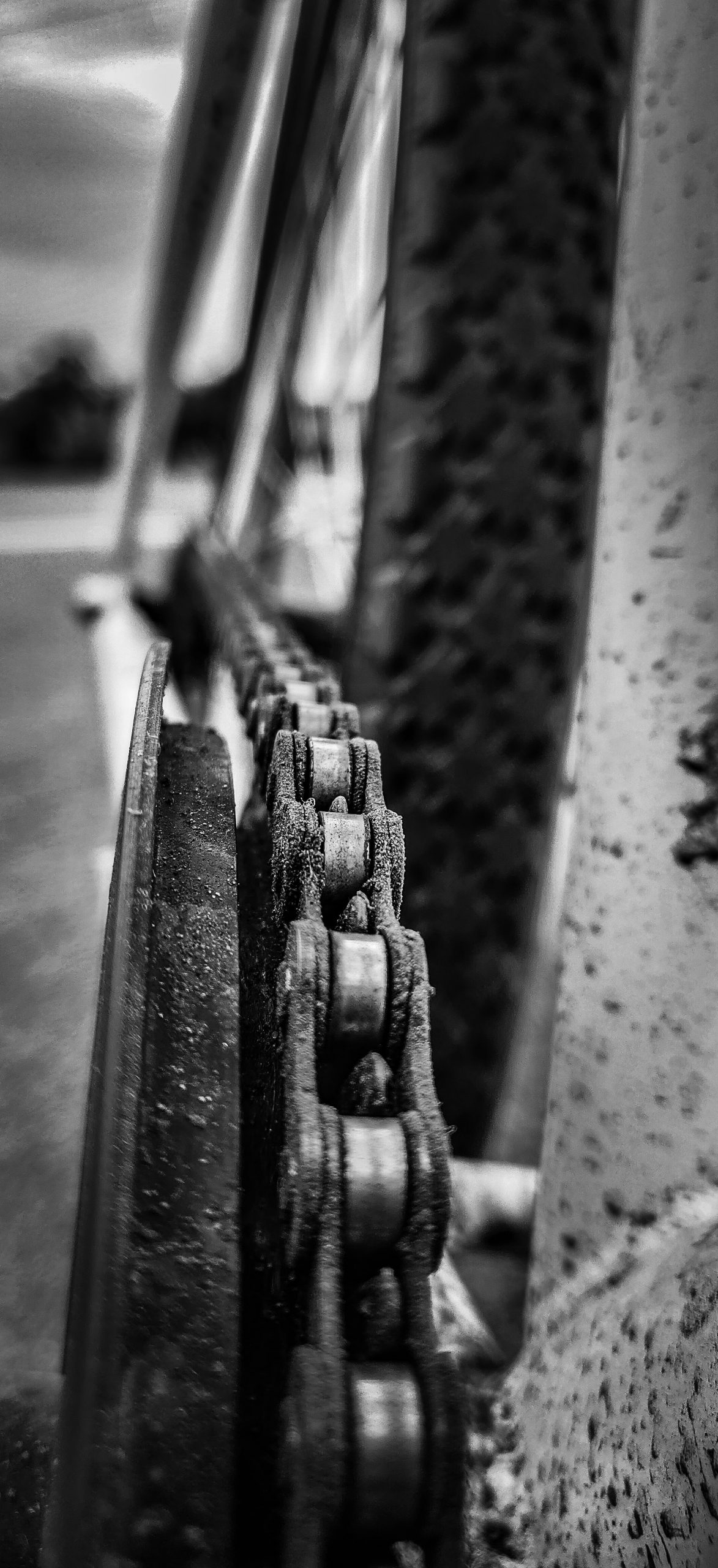 A bicycle chain