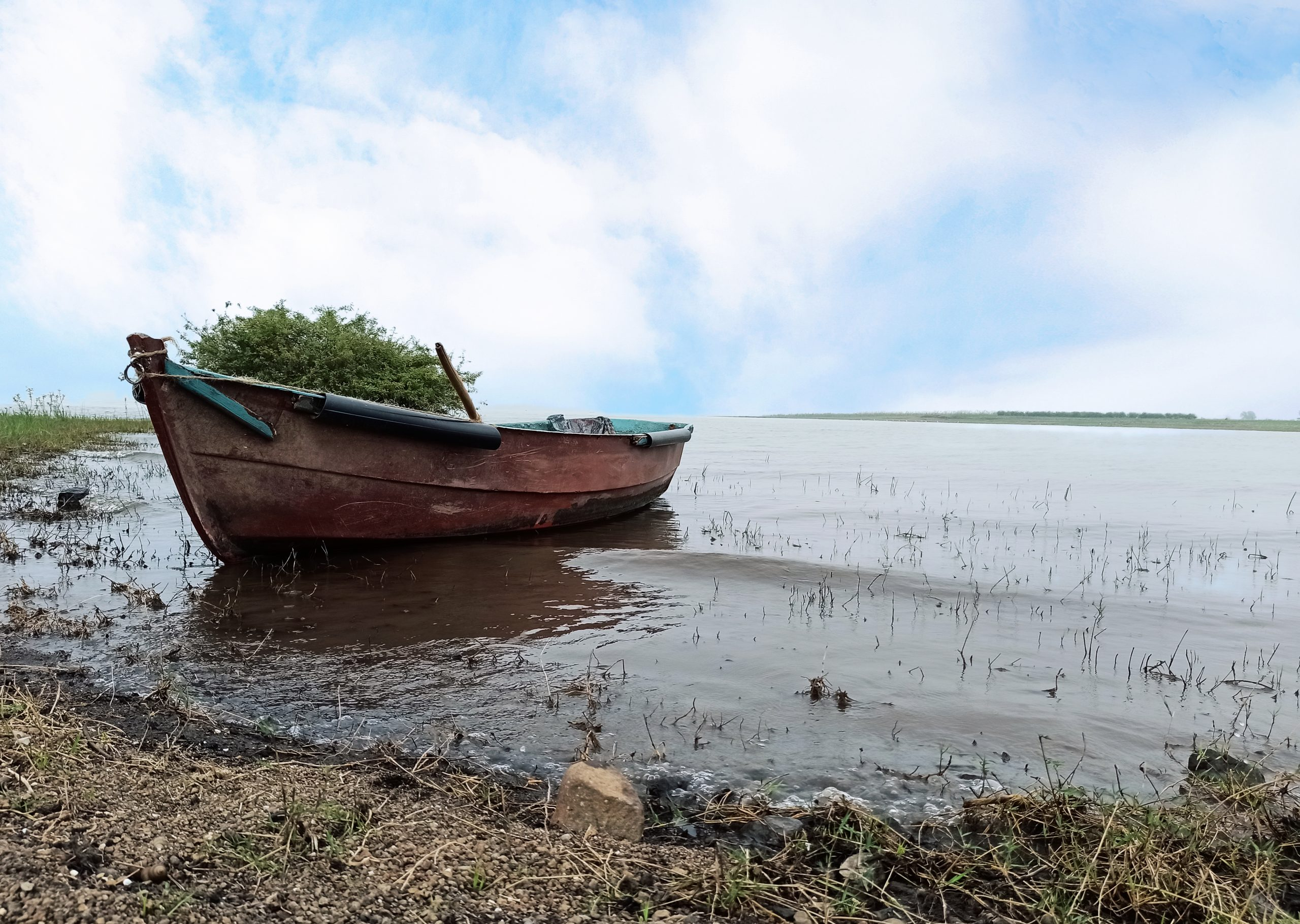 A boat at a seashore