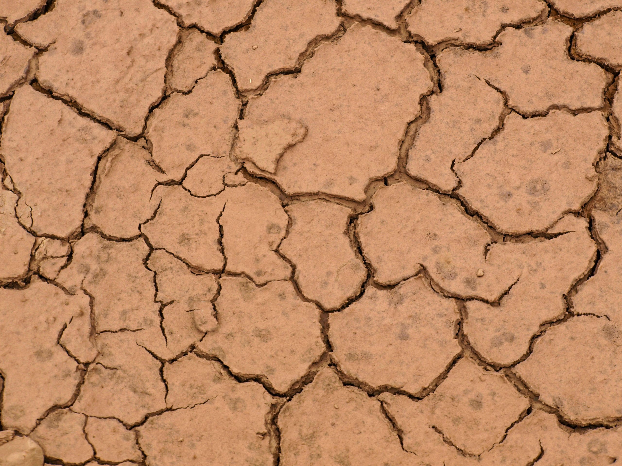 A dry land