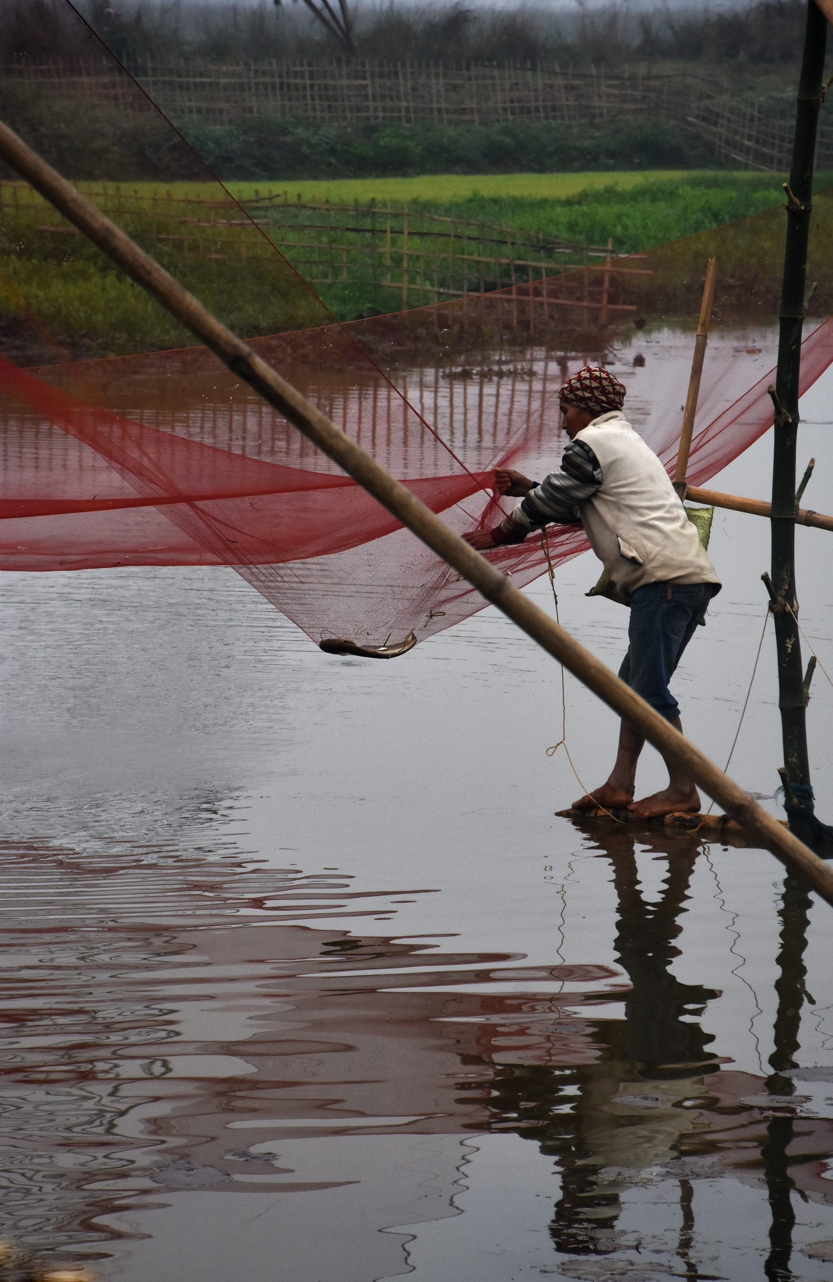 A fisherman with fishing net
