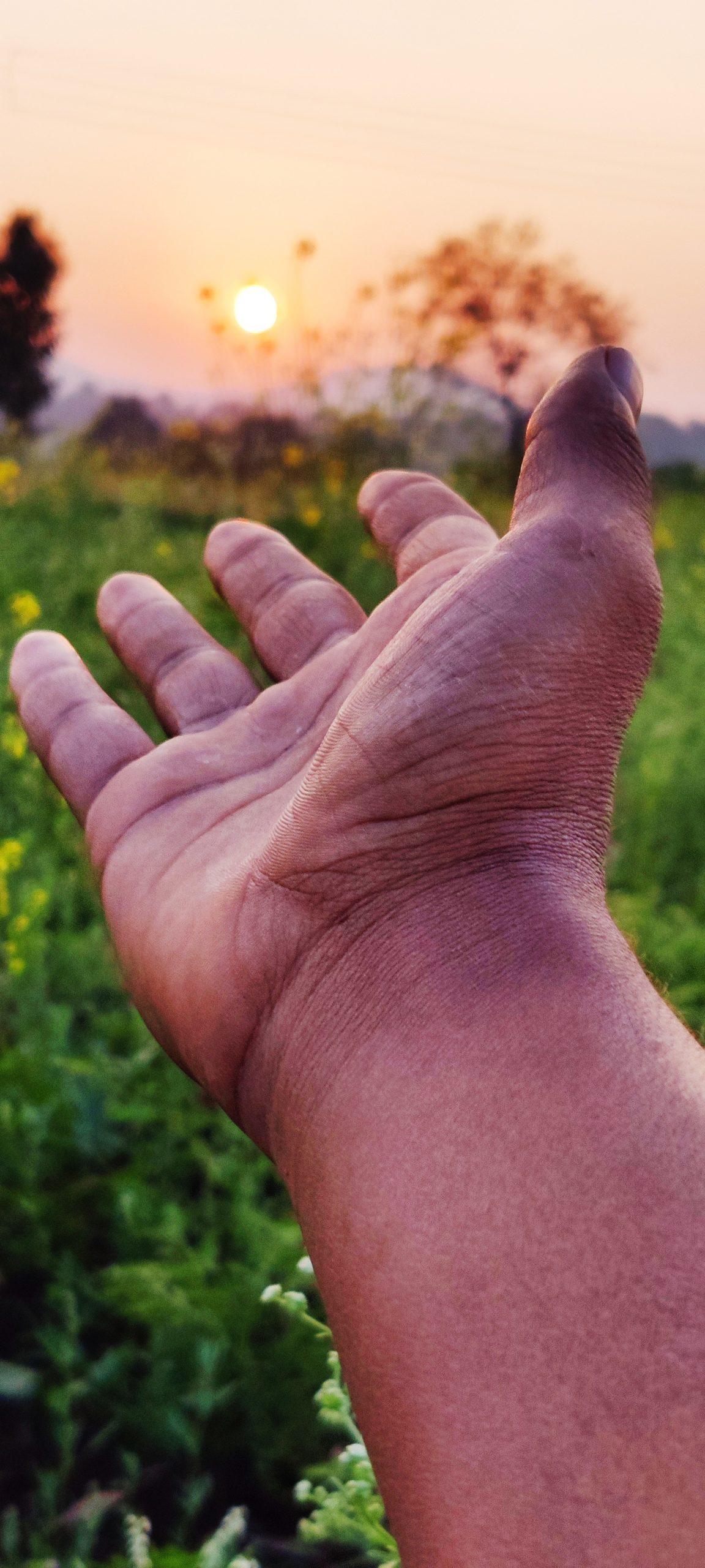 A hand towards sunset