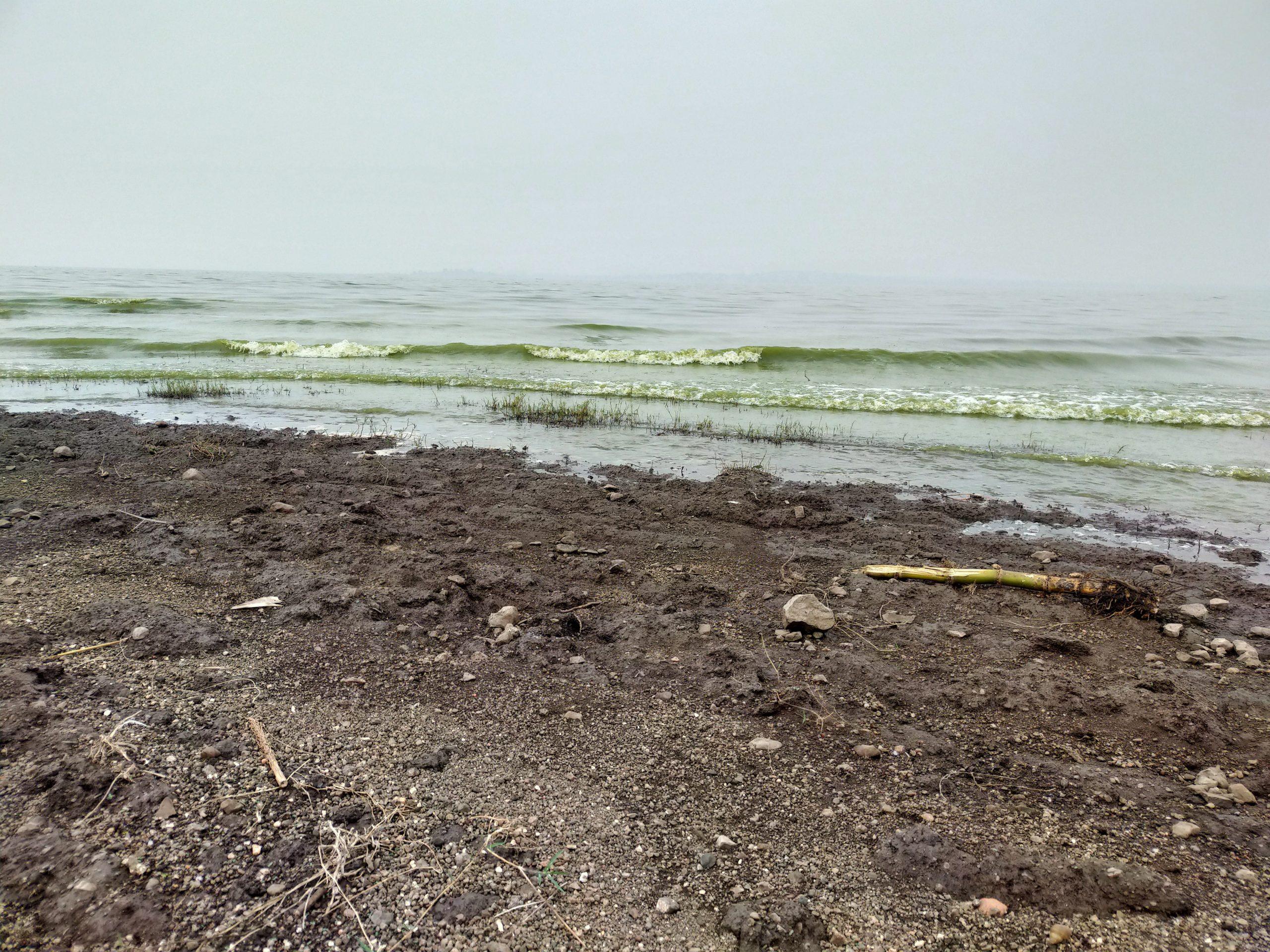 A seashore in Selud