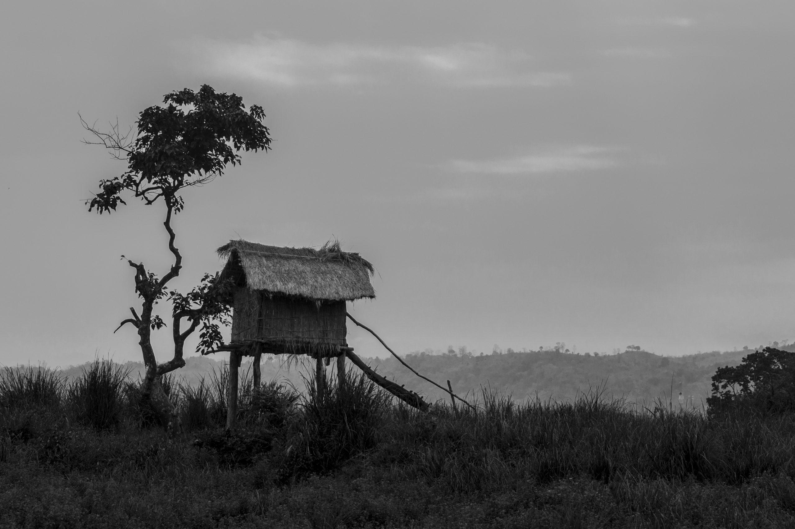 A straw hut