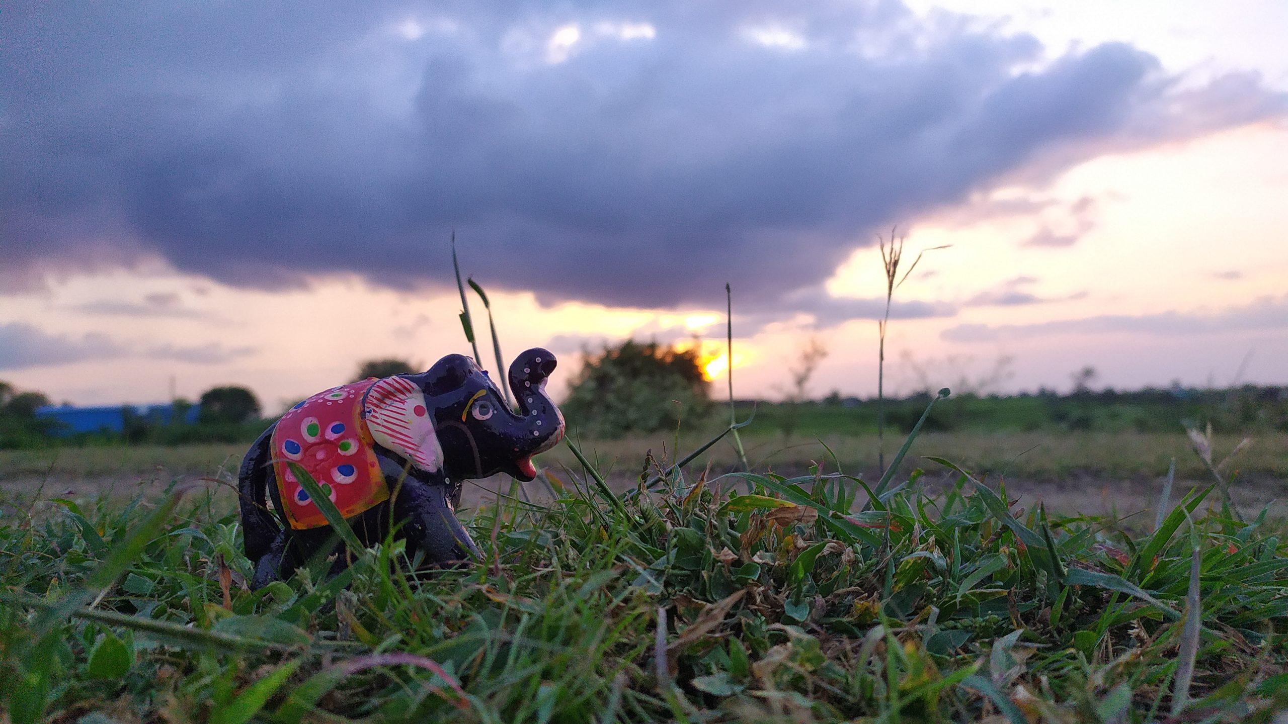 A toy elephant on grass