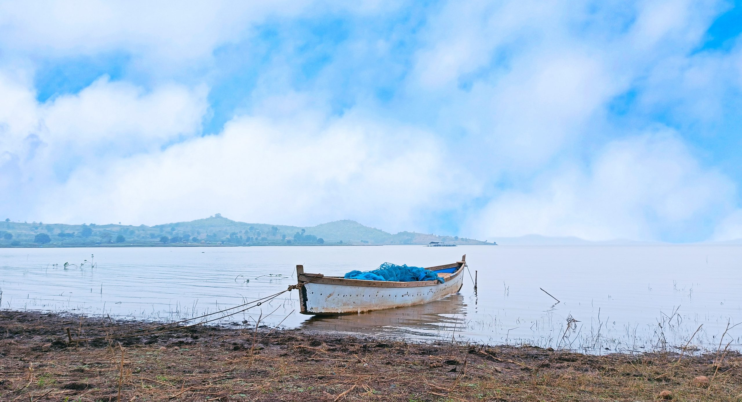 A wooden boat tied to shore