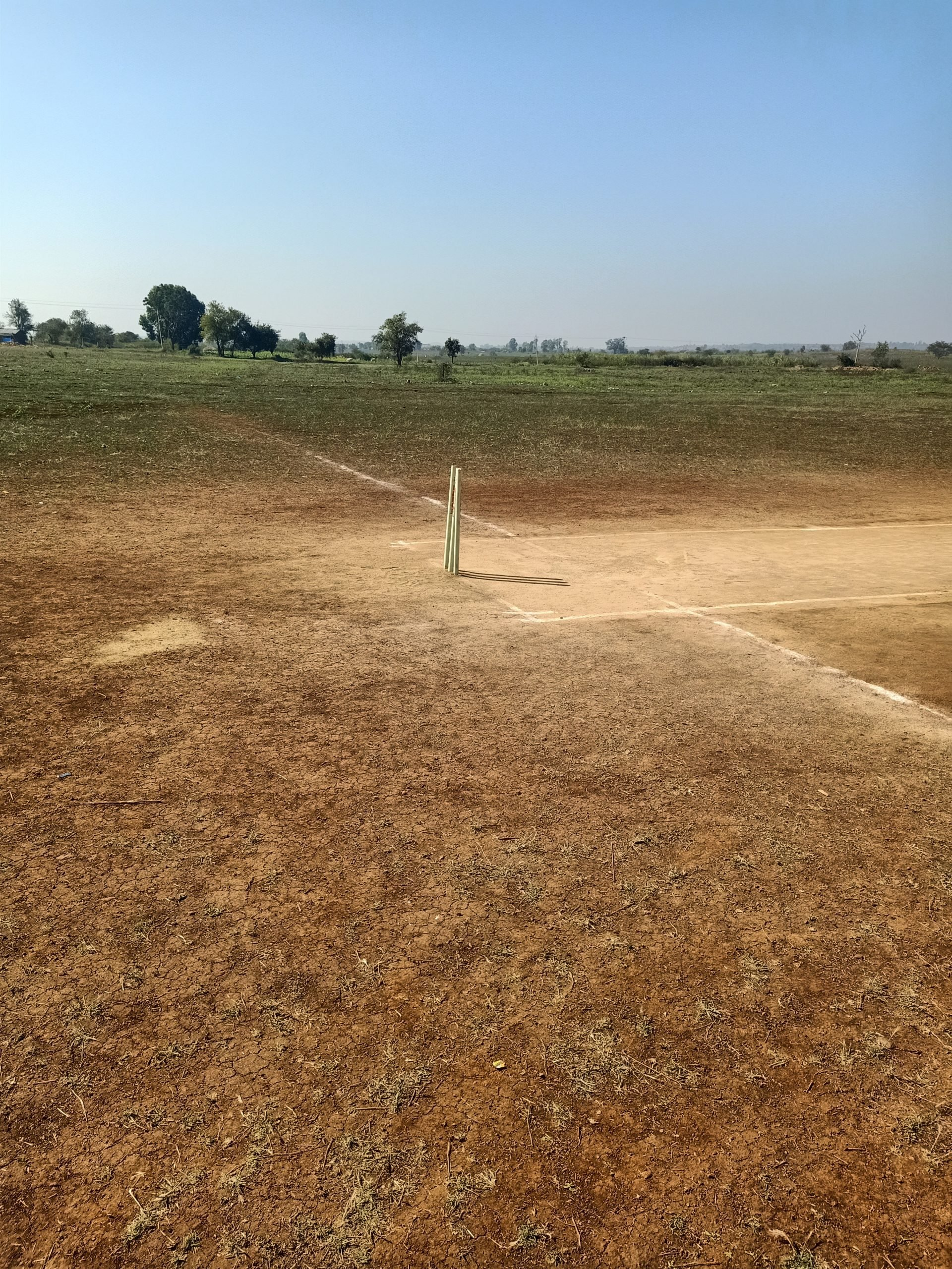Cricket pitch side view