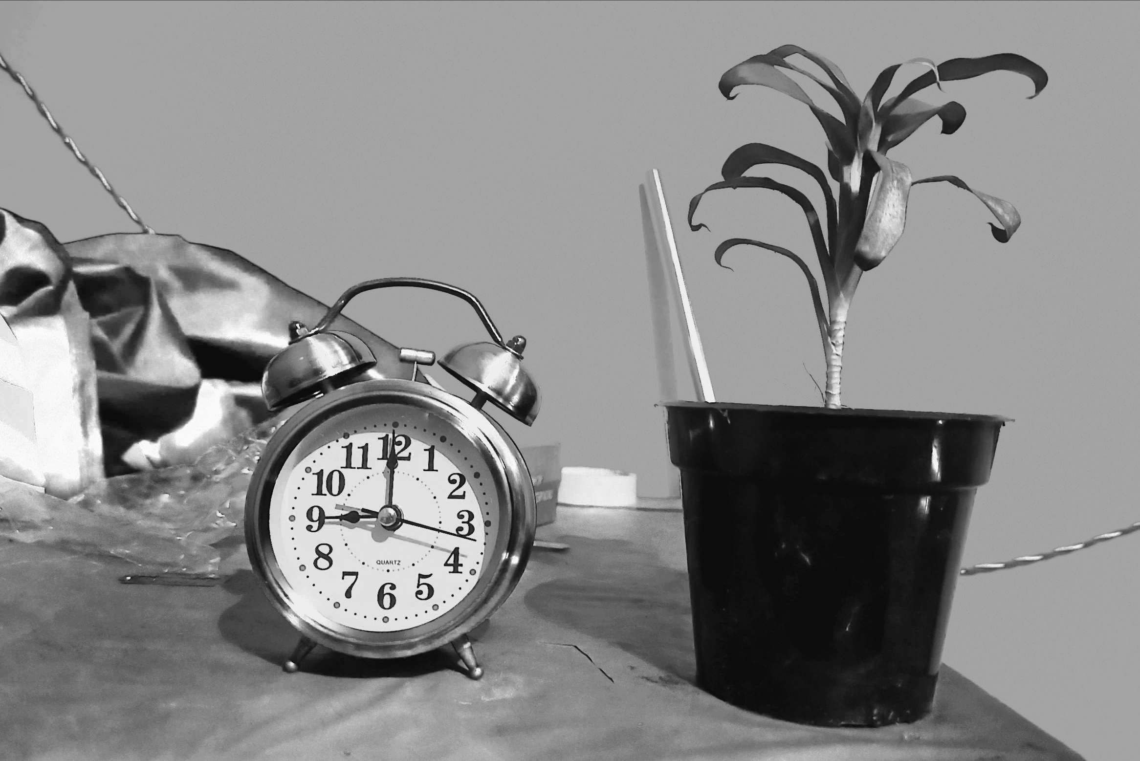 Alarm clock and flower pot